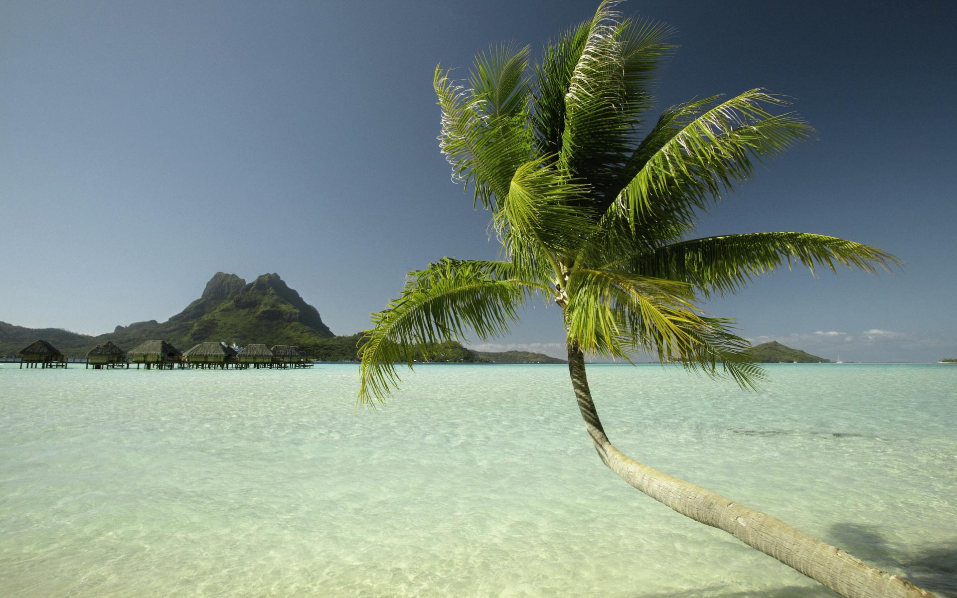 Острова картинки на аватарку