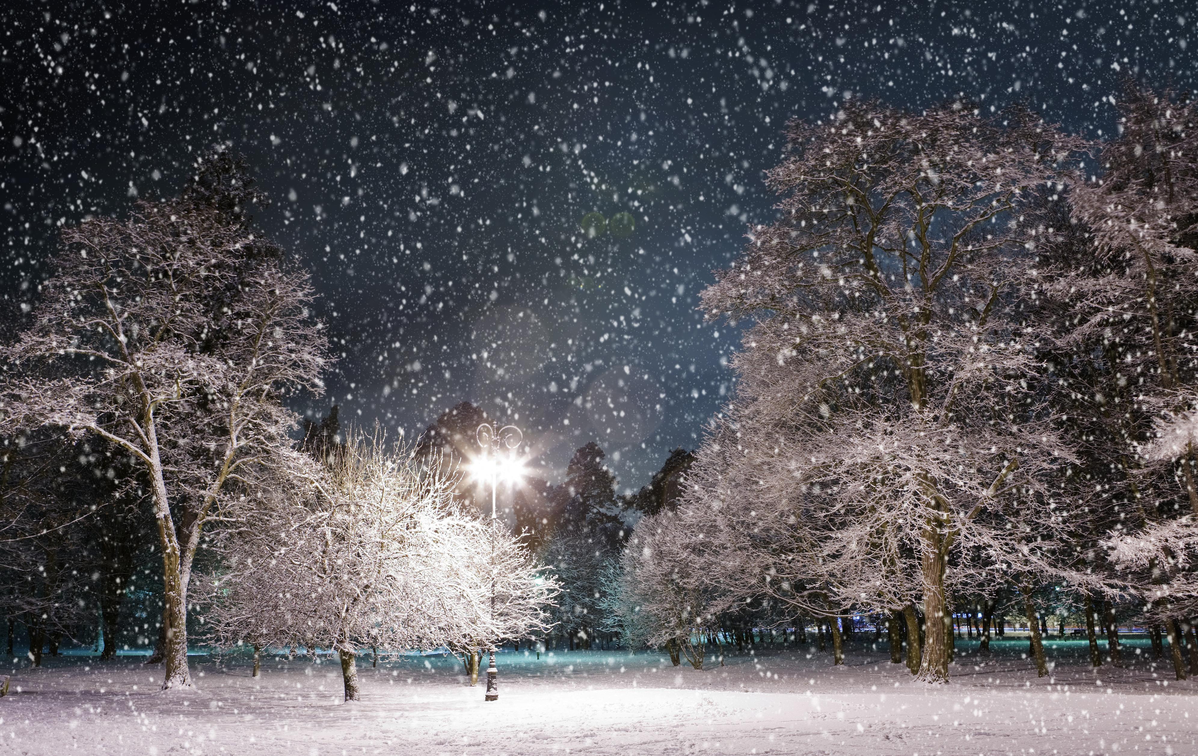 Красивые картинки снегопада днем