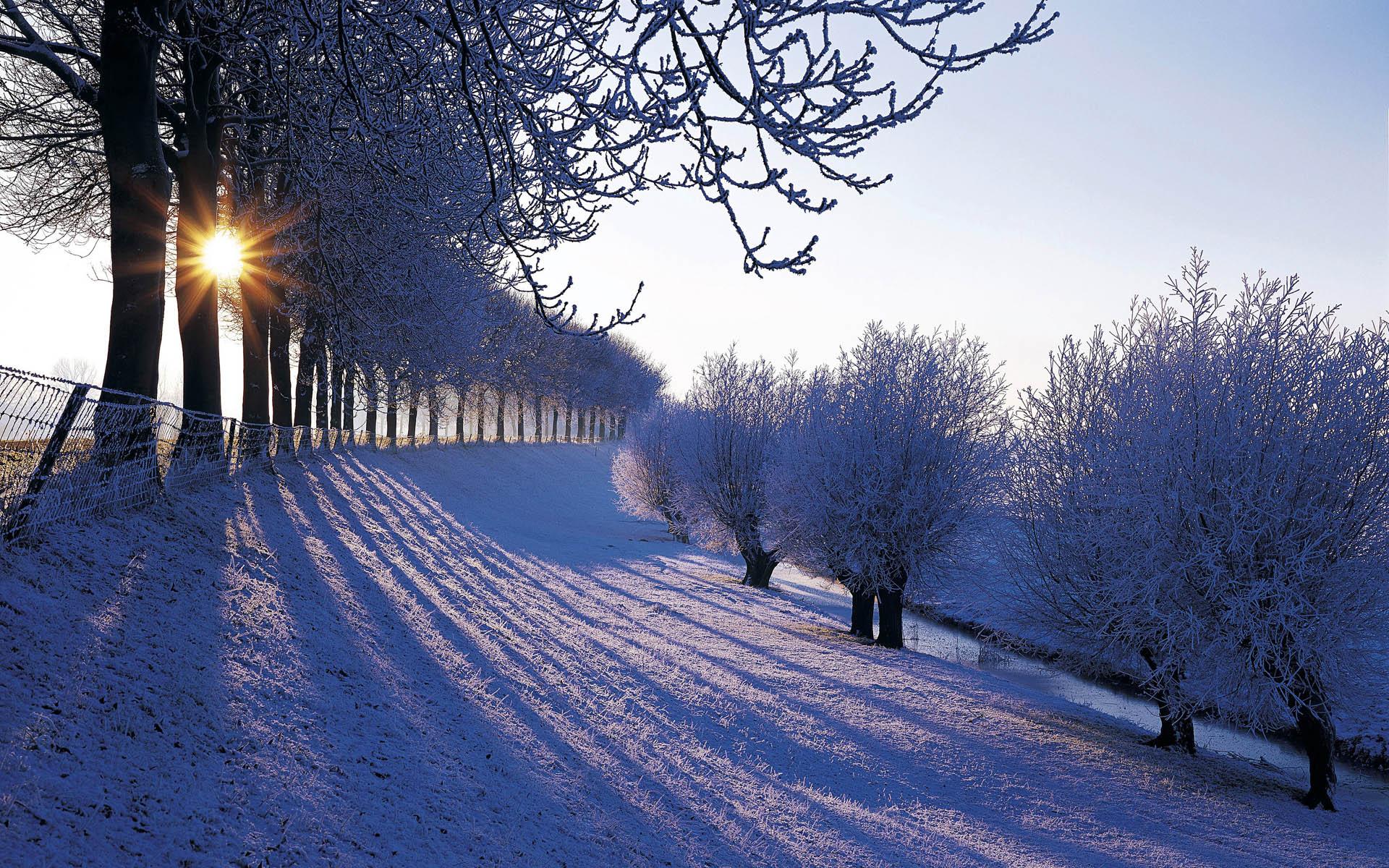 картинки снега в городе высокое качество вот отношениях