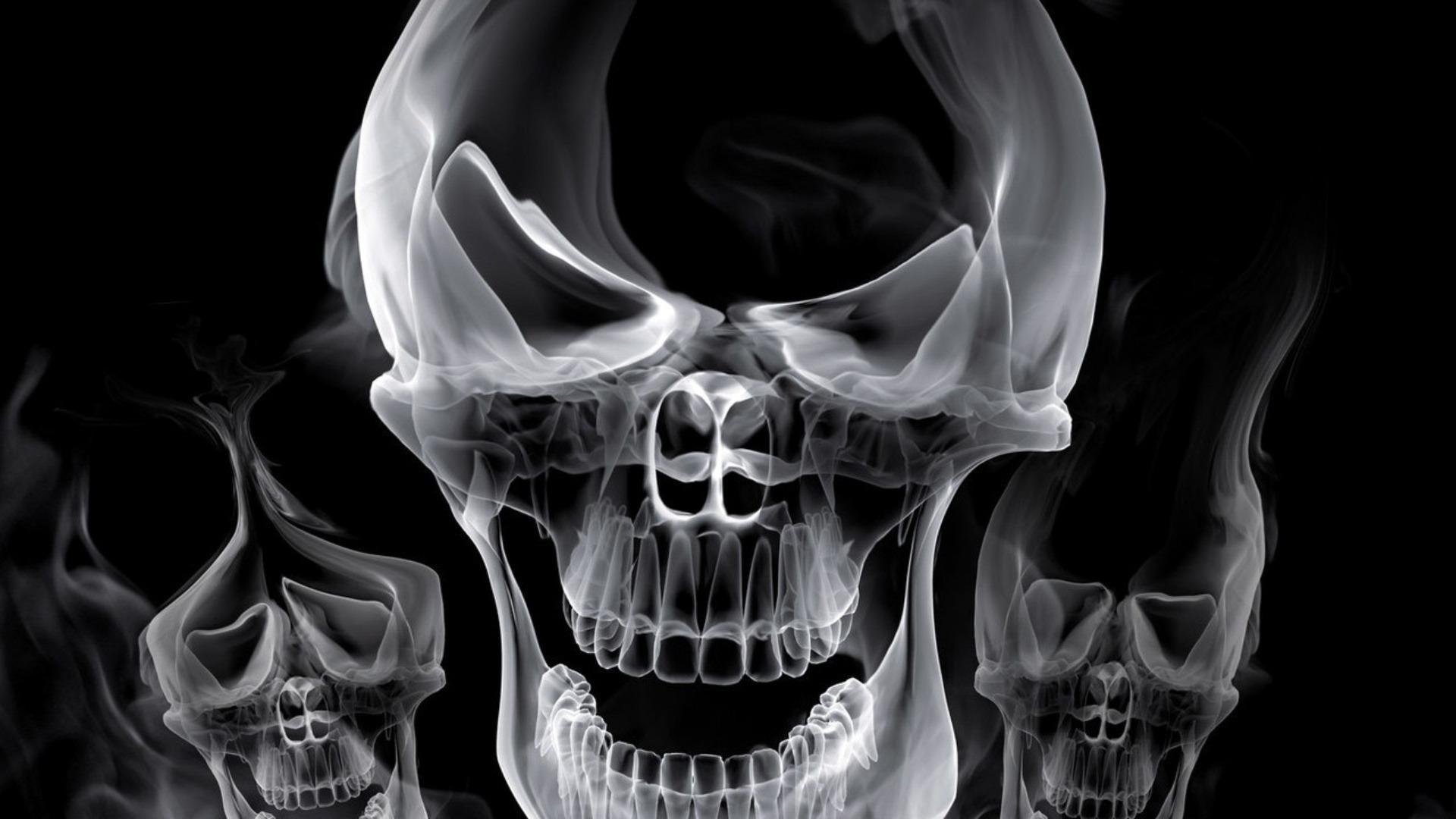 работы объекте фотообои для рабочего стола широкоформатные черепа ценители часов любят