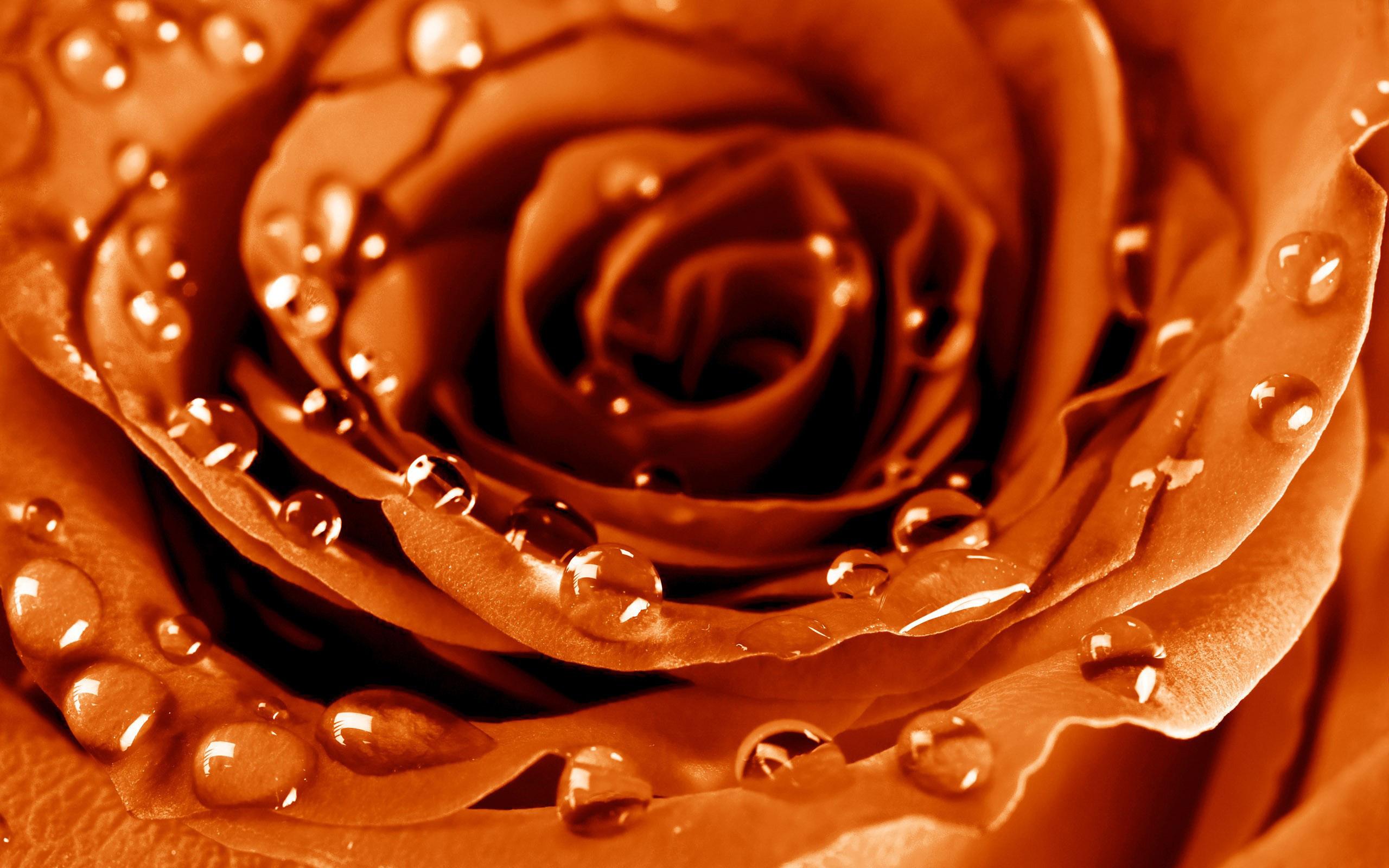 коричневые картинки красивые на телефон плитка