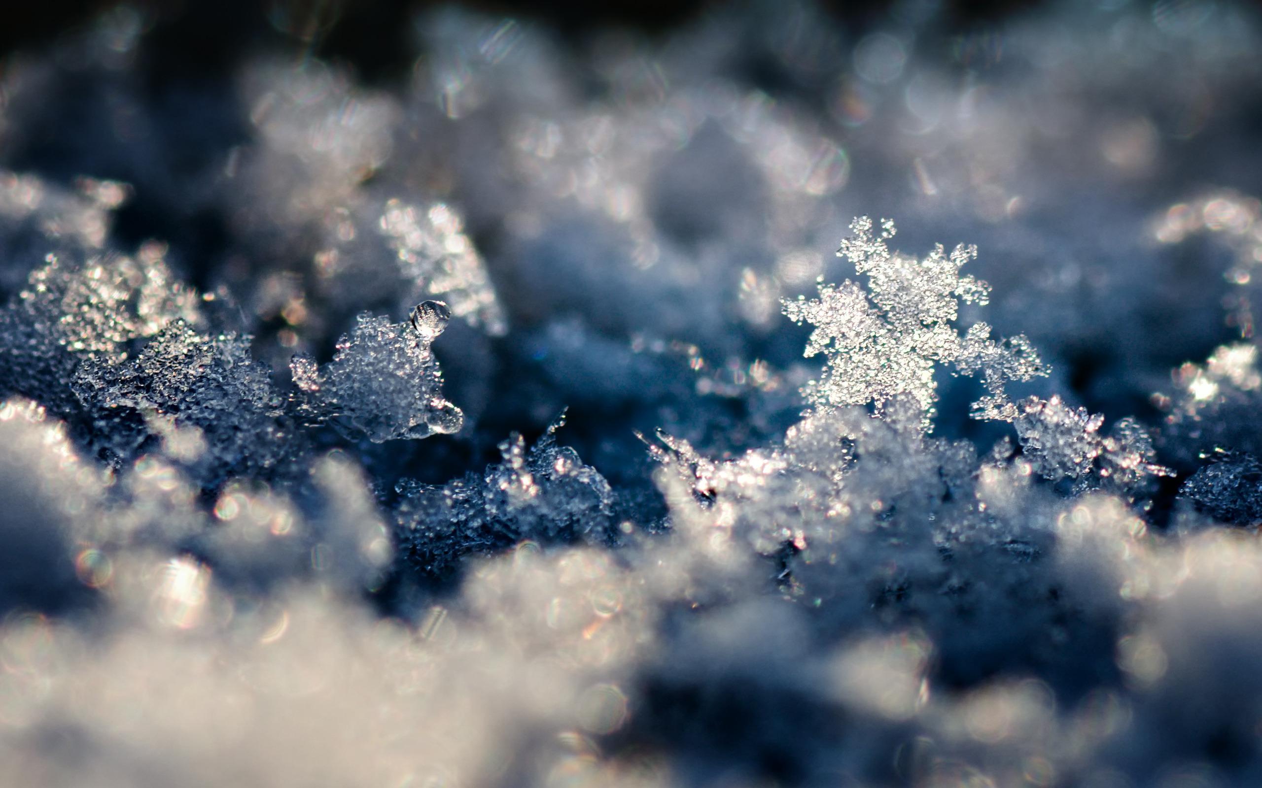 лицо фото на телефон снег гифка красные