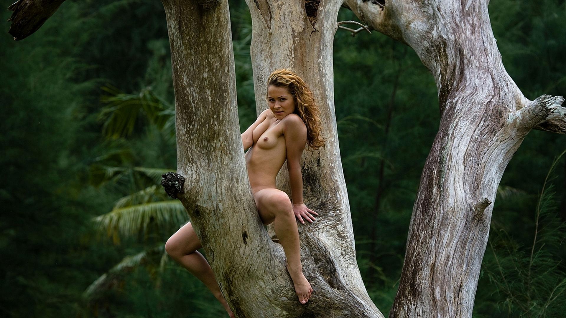 Голая на дереве фото 13