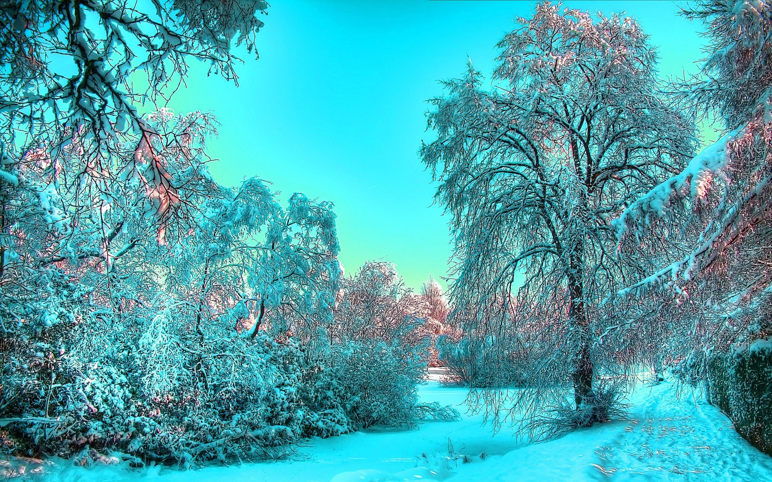 Самые Красивые Обои Зима