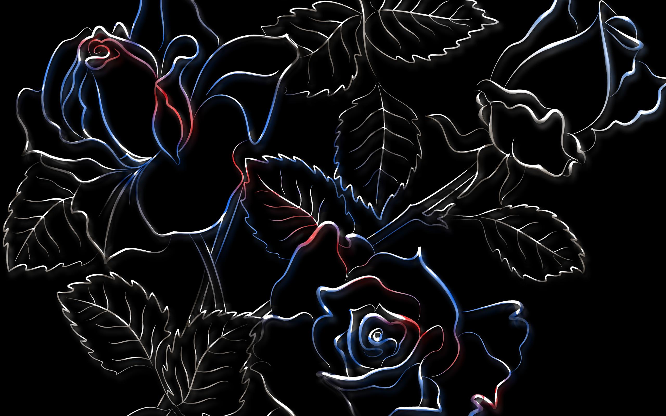 картинки на экран цветы на черном фоне инфекционных болезней состоит
