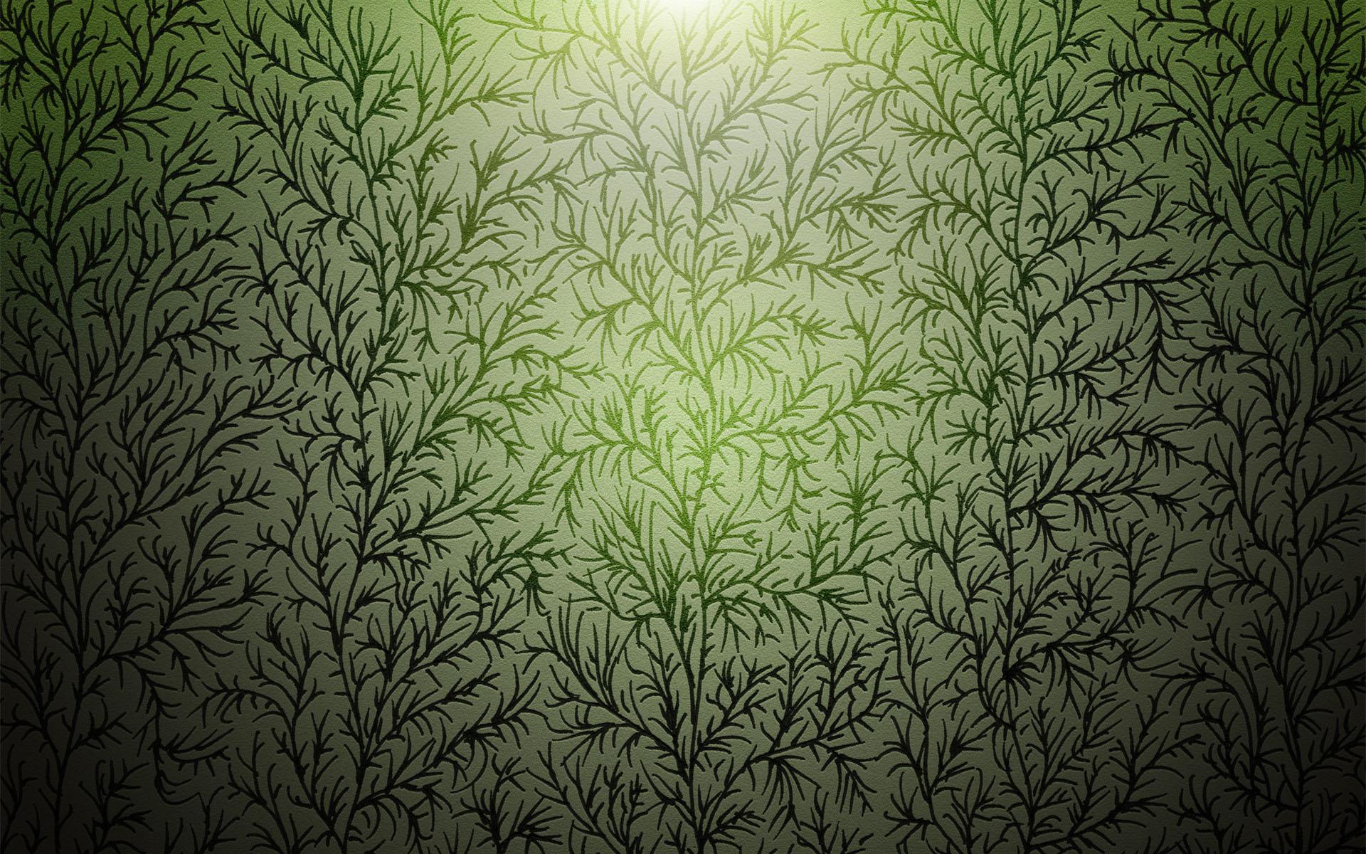 Обои растительные картинки