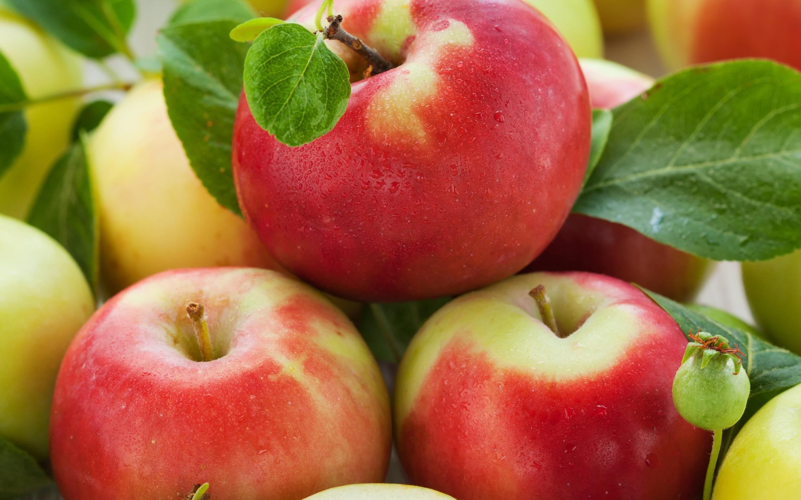 картинки на тему яблок детишкам поможет