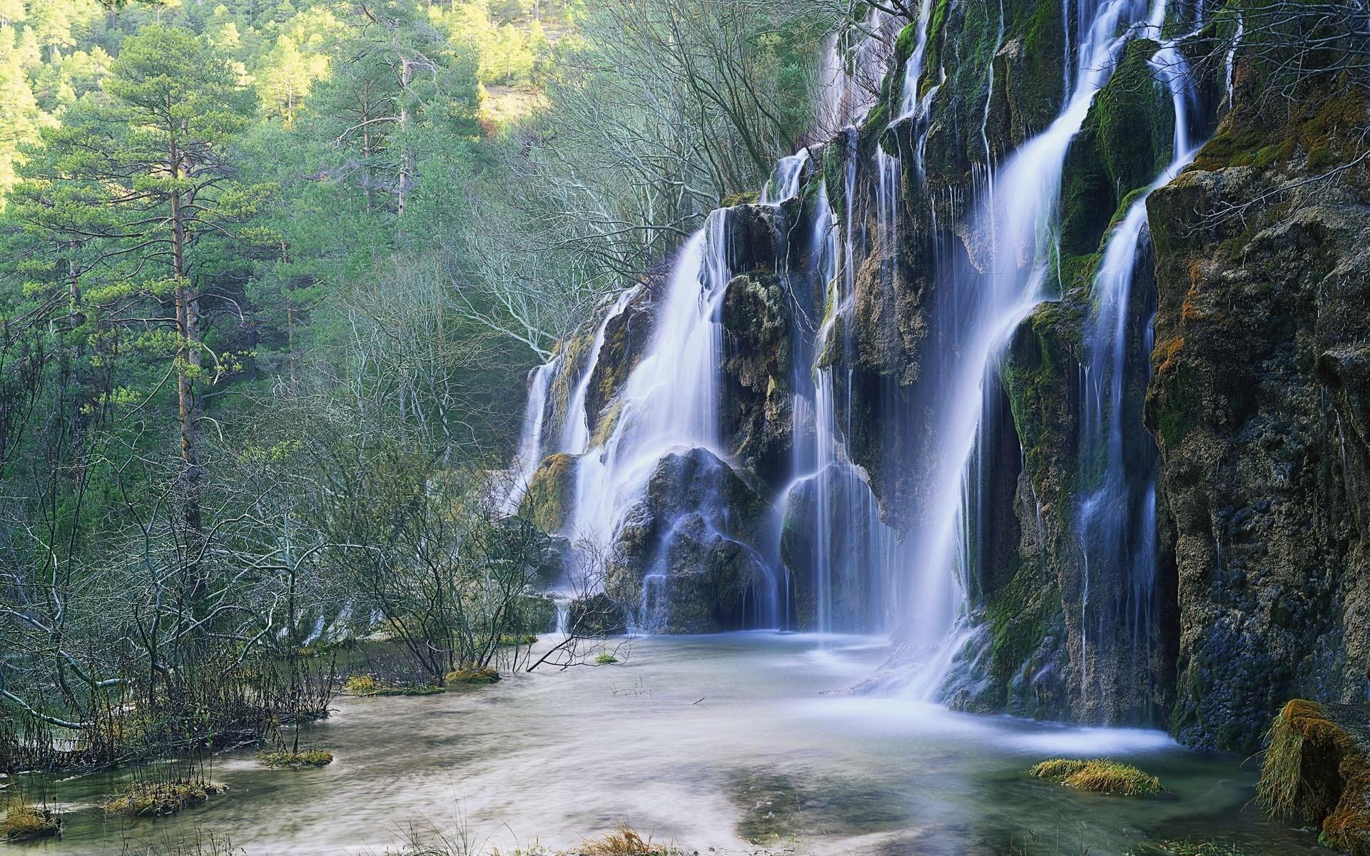 этот обои лесной водопад что