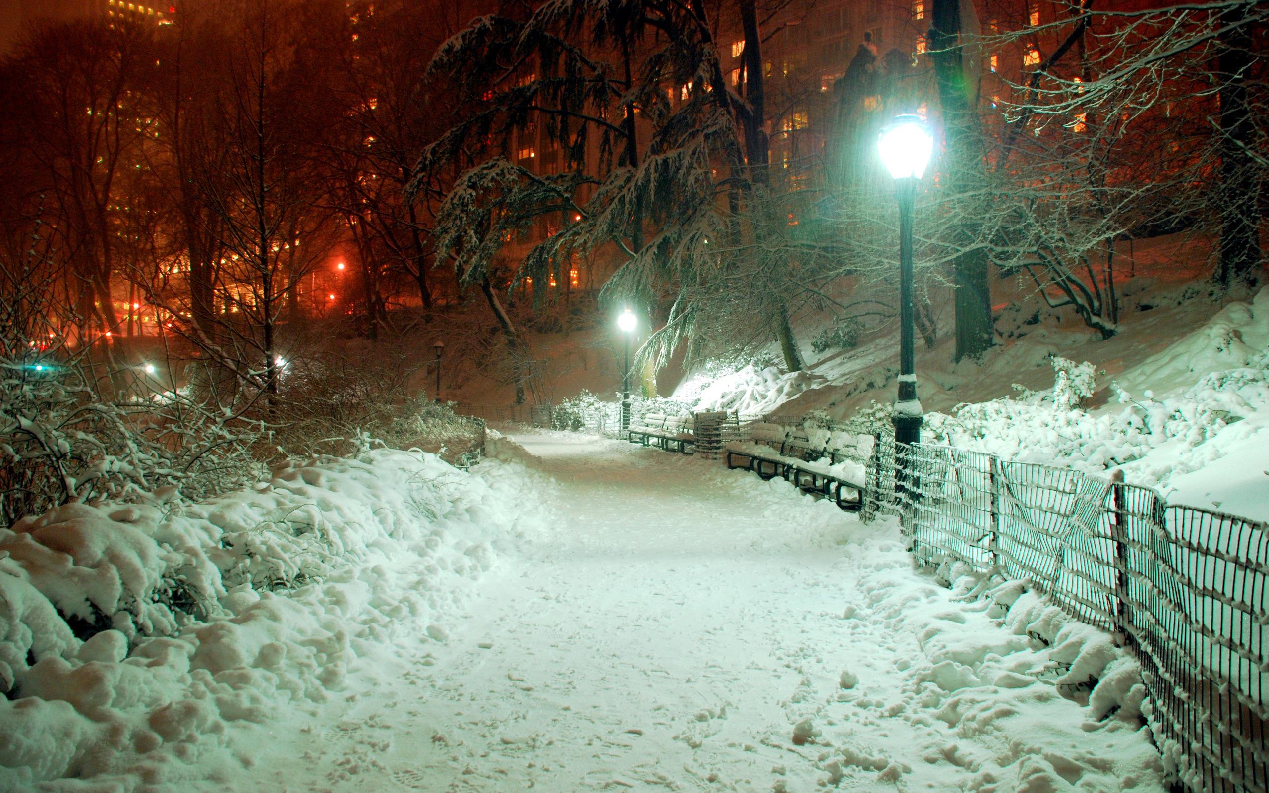 снежная ночь в городе фото интересное рядом