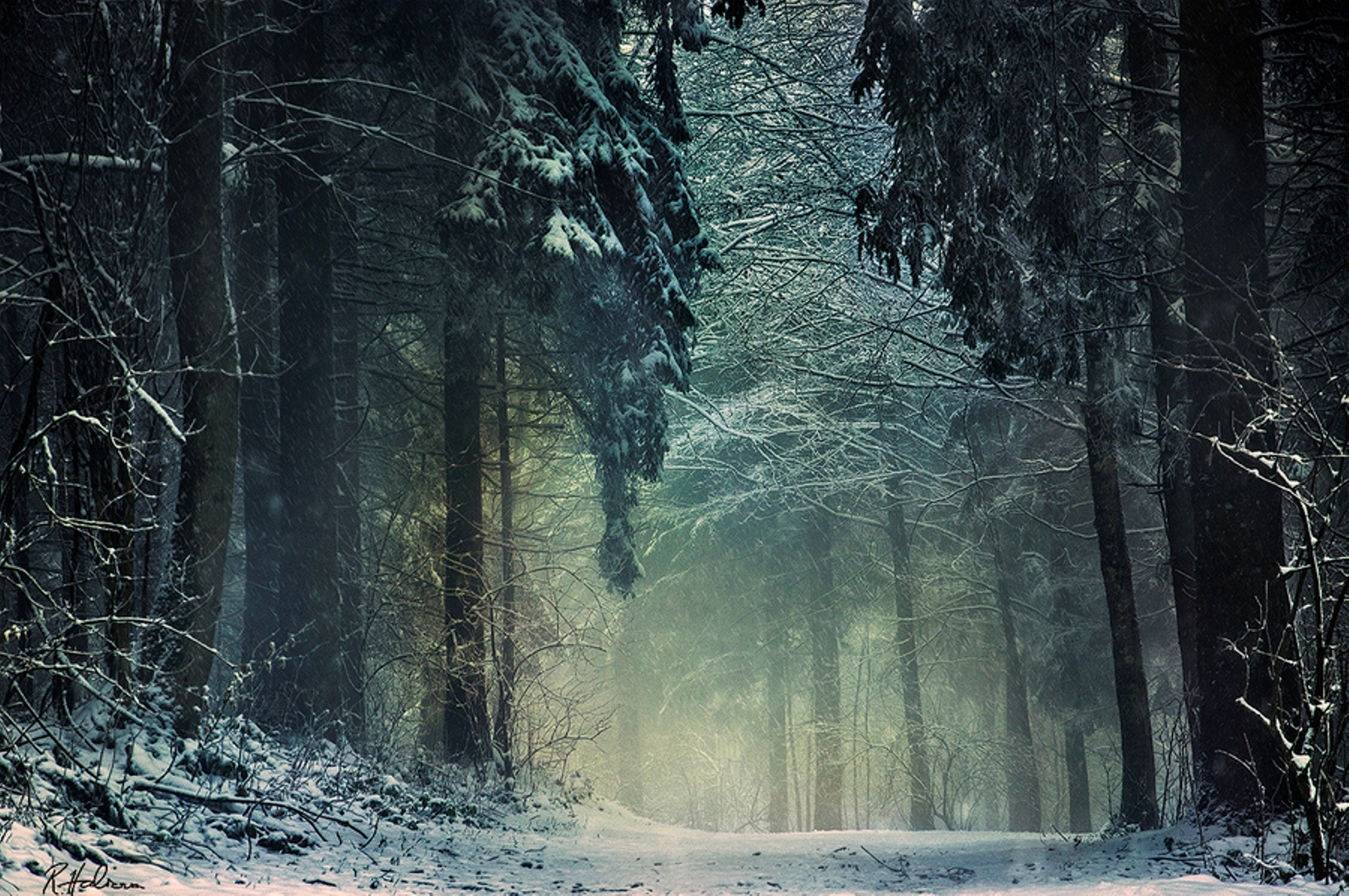 проявляется таинственная зима картинки нем