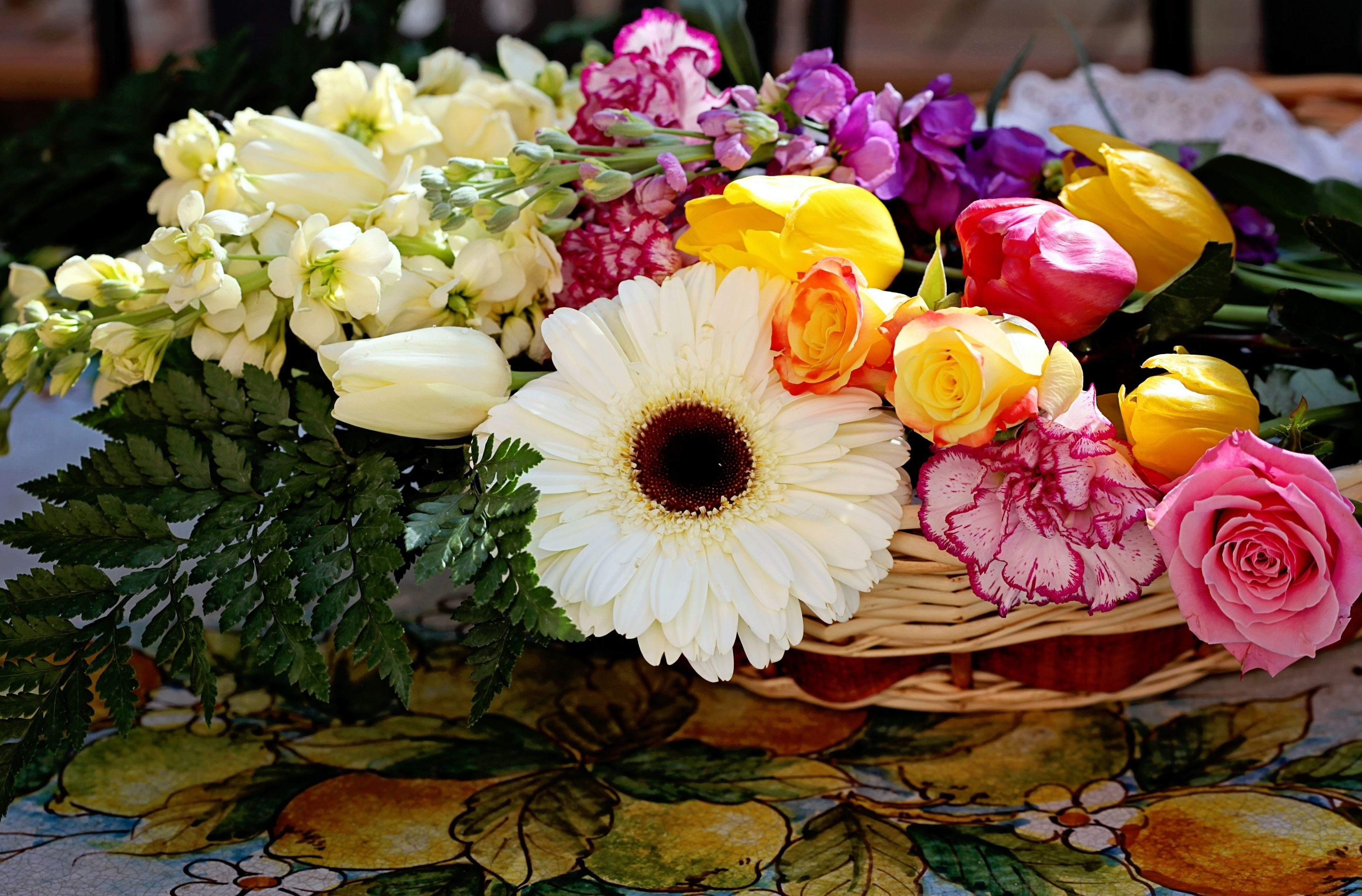ли, найти красивые фото цветов на первое отмечает дискомфорт