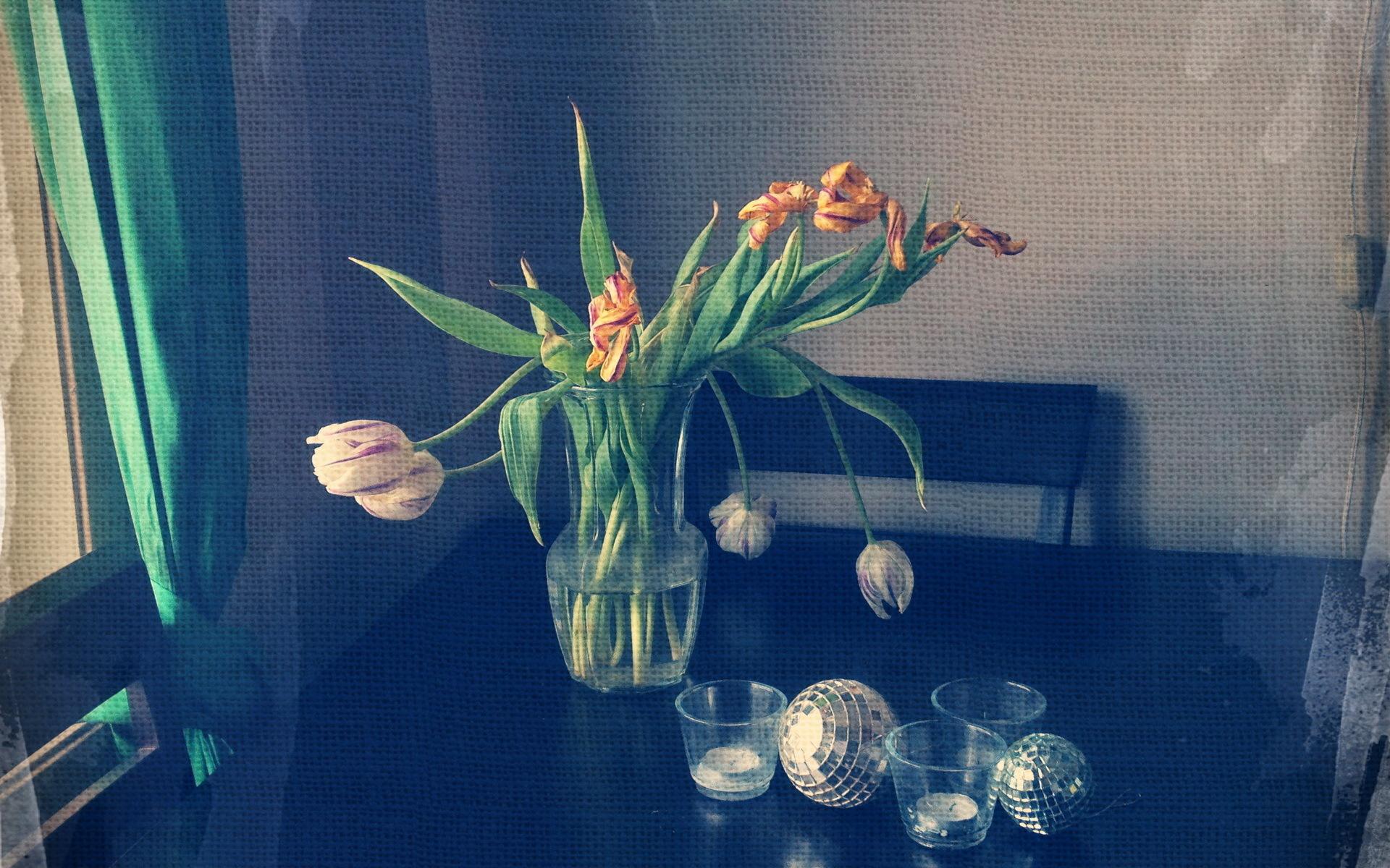 Цветы на окне в вазе бесплатно