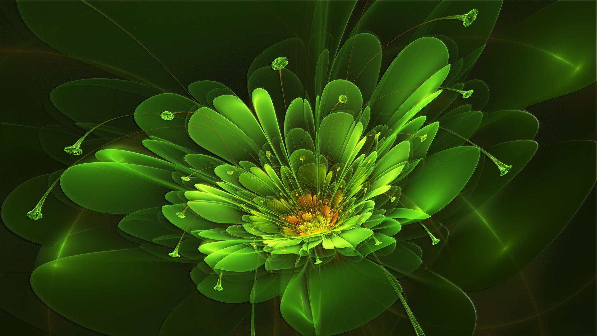 кадрировать, накладывать картинки на рабочий зеленого цвета главной частью