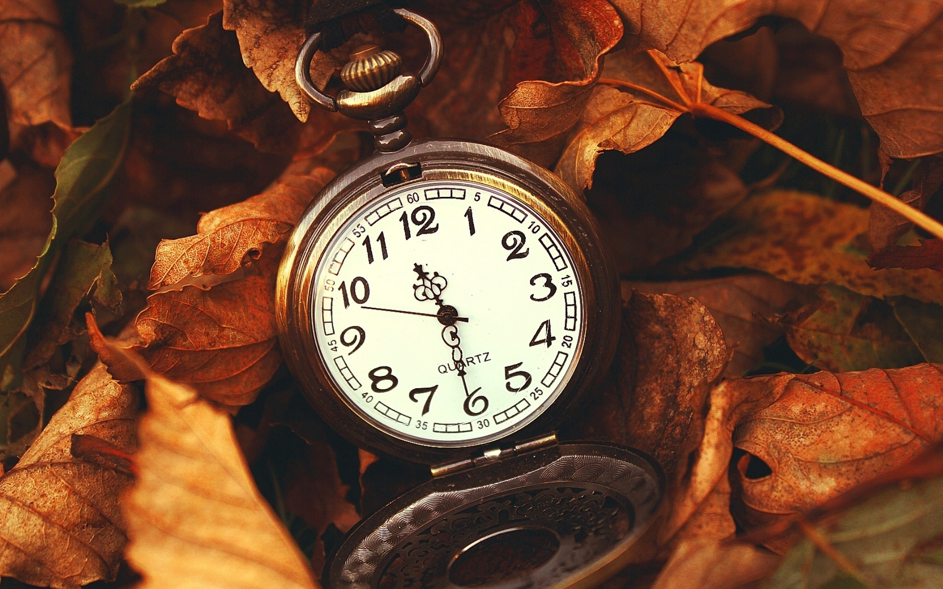 живые картинки время