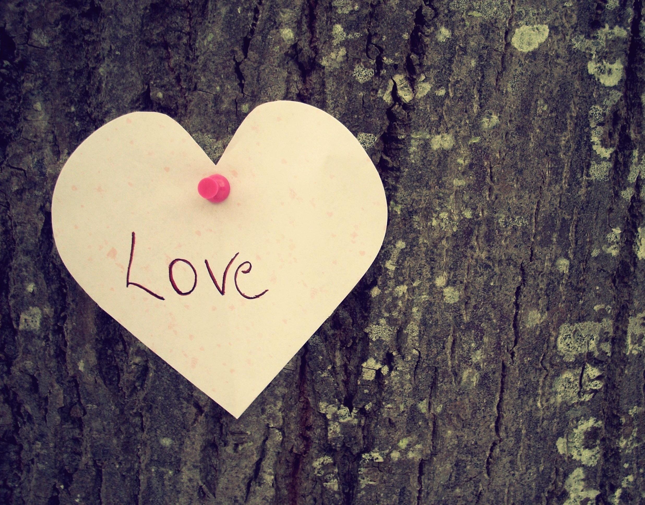 Самые классные картинки про любовь в надписях