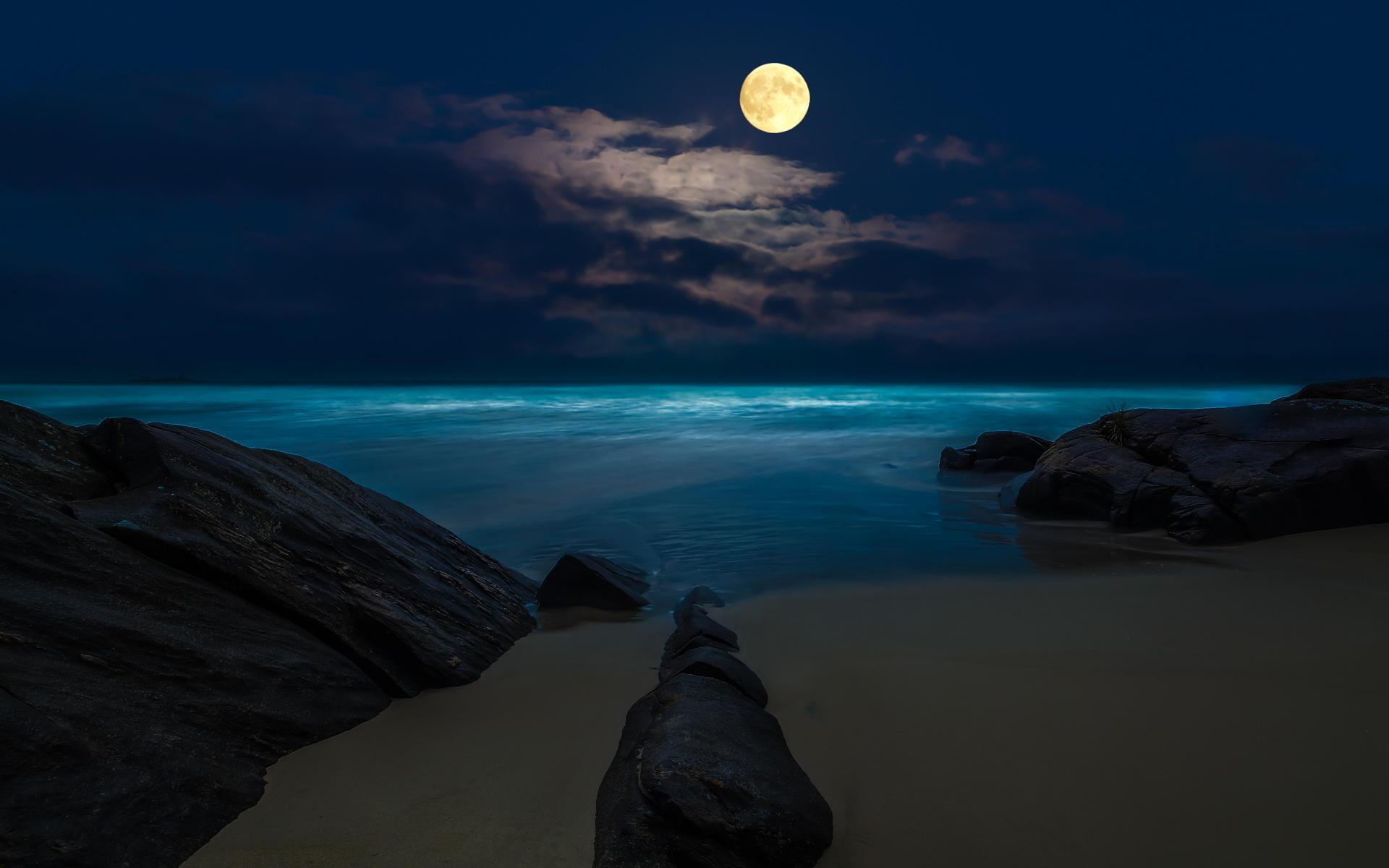весна пляж и луна фото орбакайте удивила