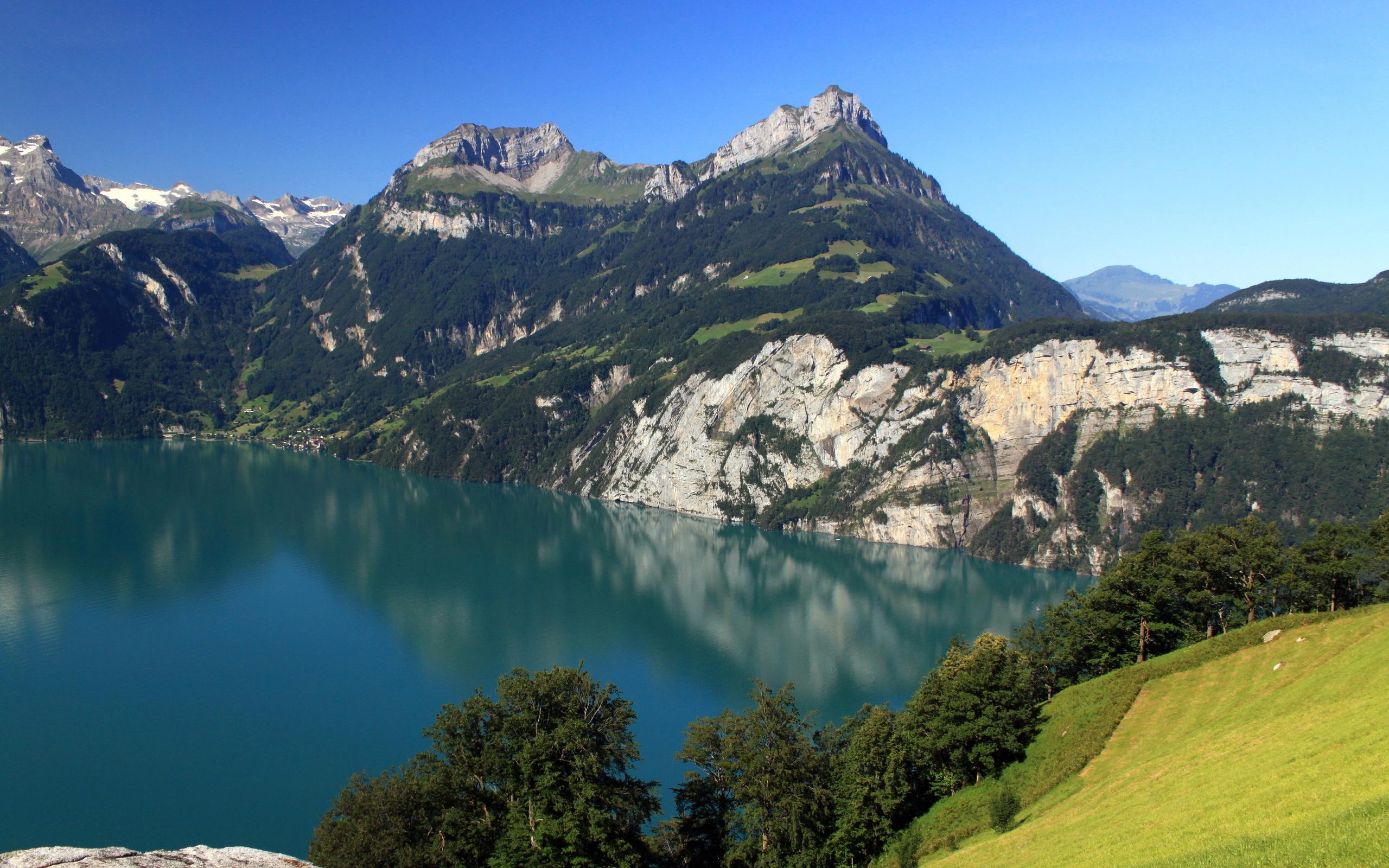 швейцарские горы картинки голубей активно использовали