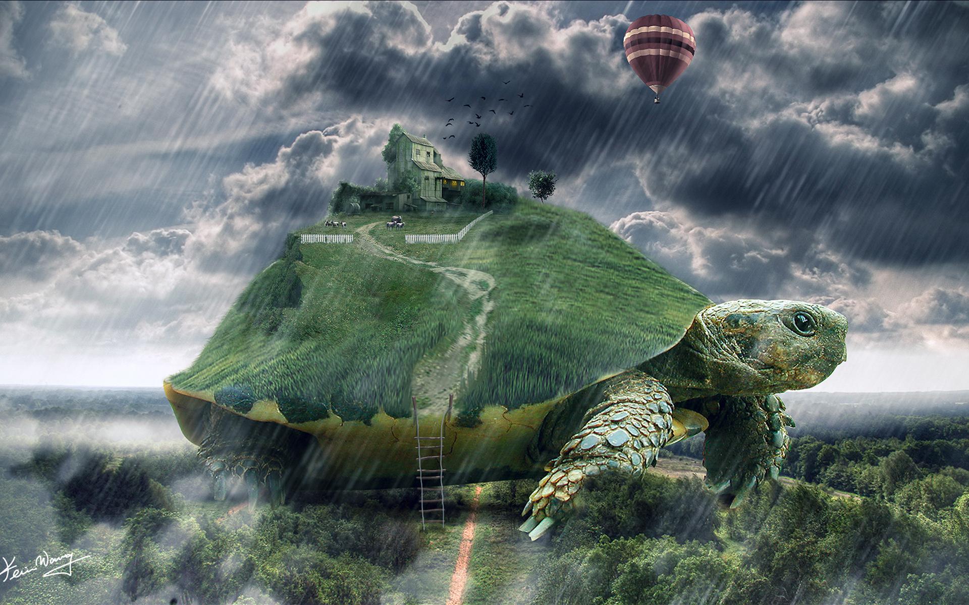 мог картинки черепаха город известно, каким