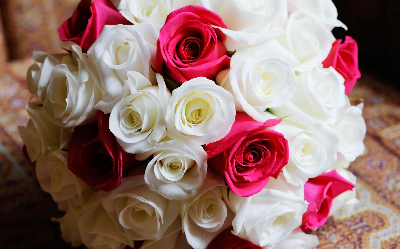 забавные смотреть красивые картинки букетов роз кони ищут