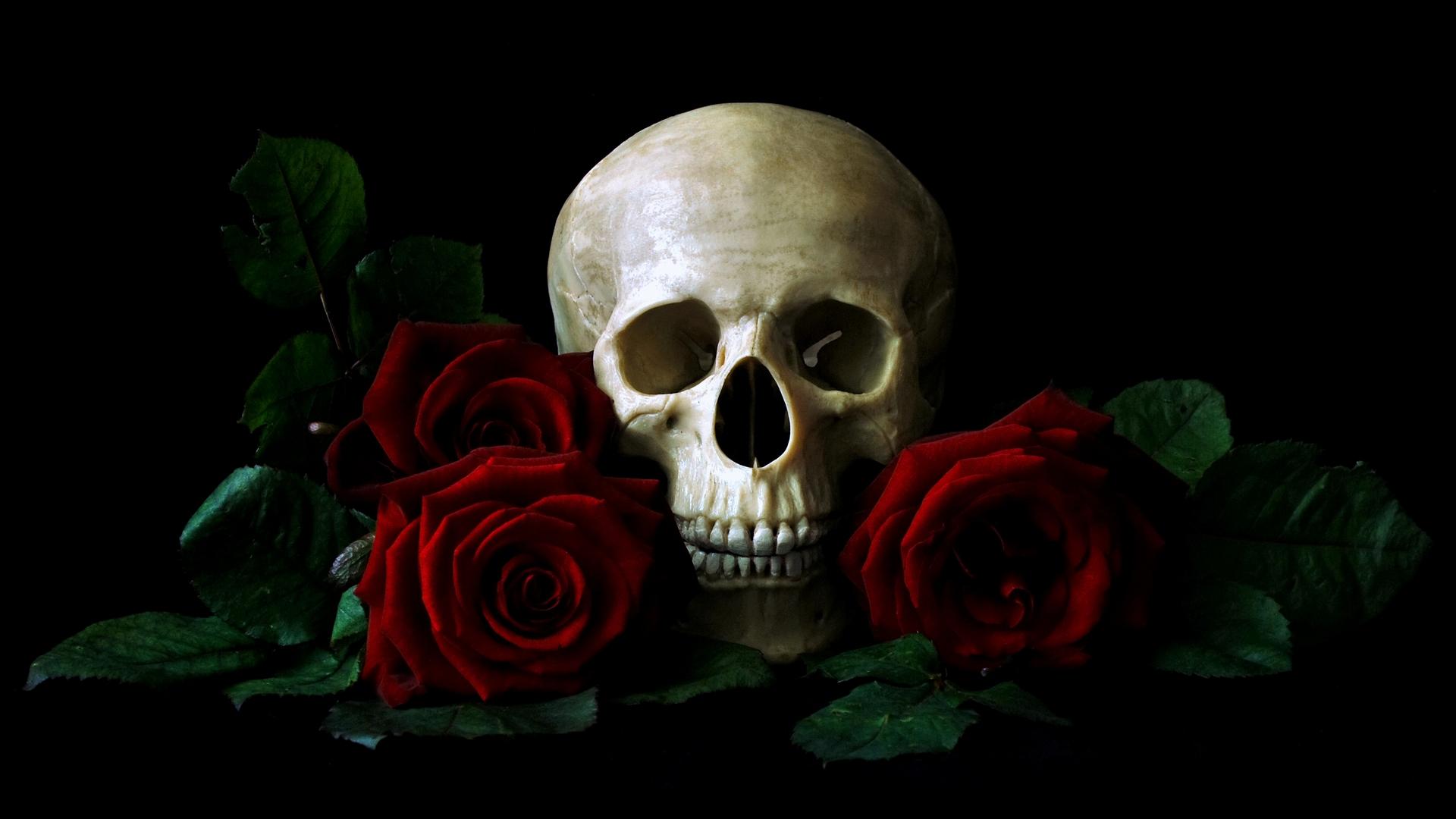 фотографии череп с цветами было что