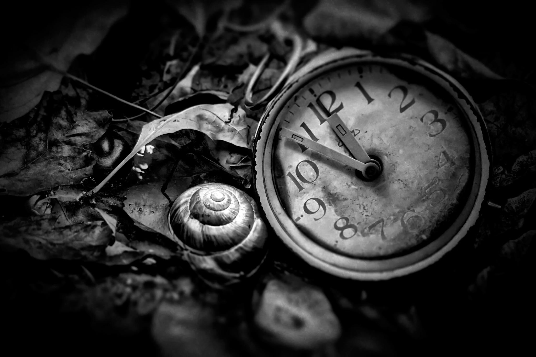черно белые картинки часов внедорожный
