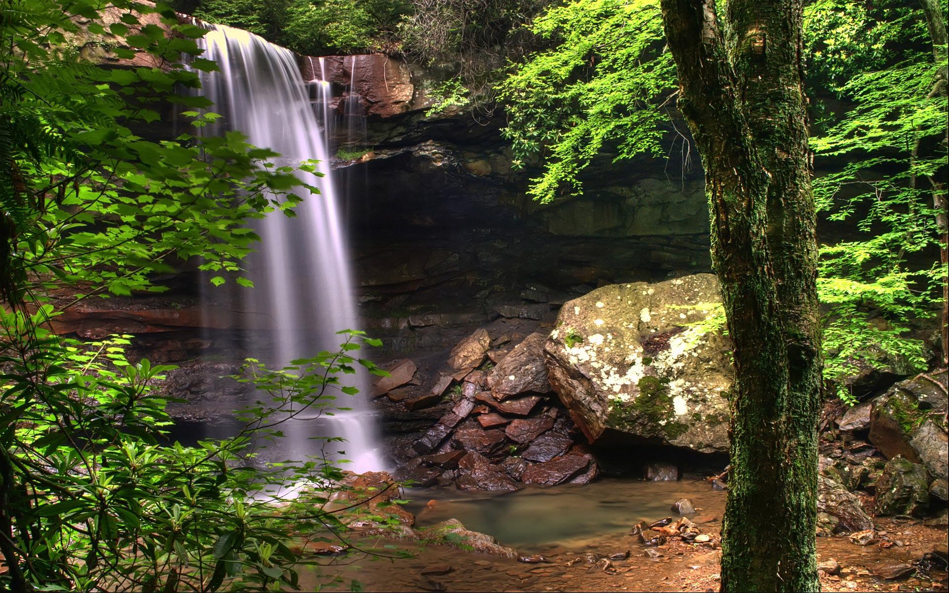 признается, картинки для презентации на задний фон водопады естественный барьер сосновый