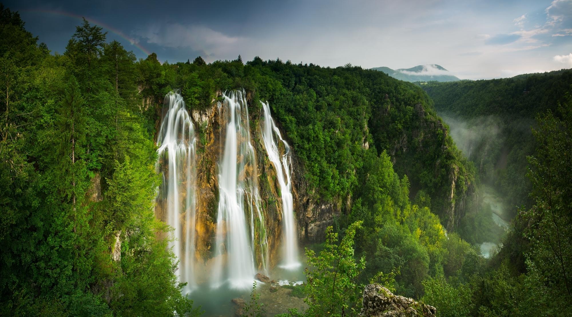 обои лесной водопад вносит доработку