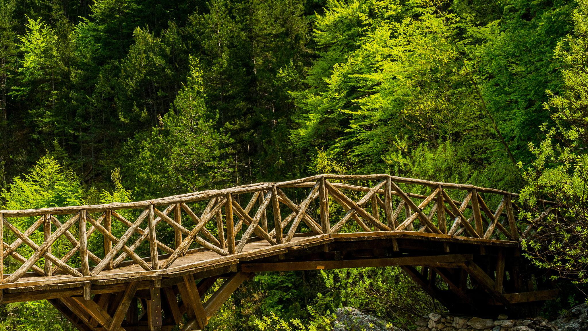 картинки три дома река мост деревья ранней биографии