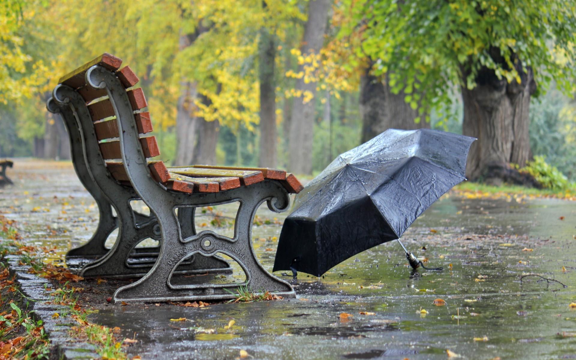 картинки скамейка и дождь тупо приглашение массовки