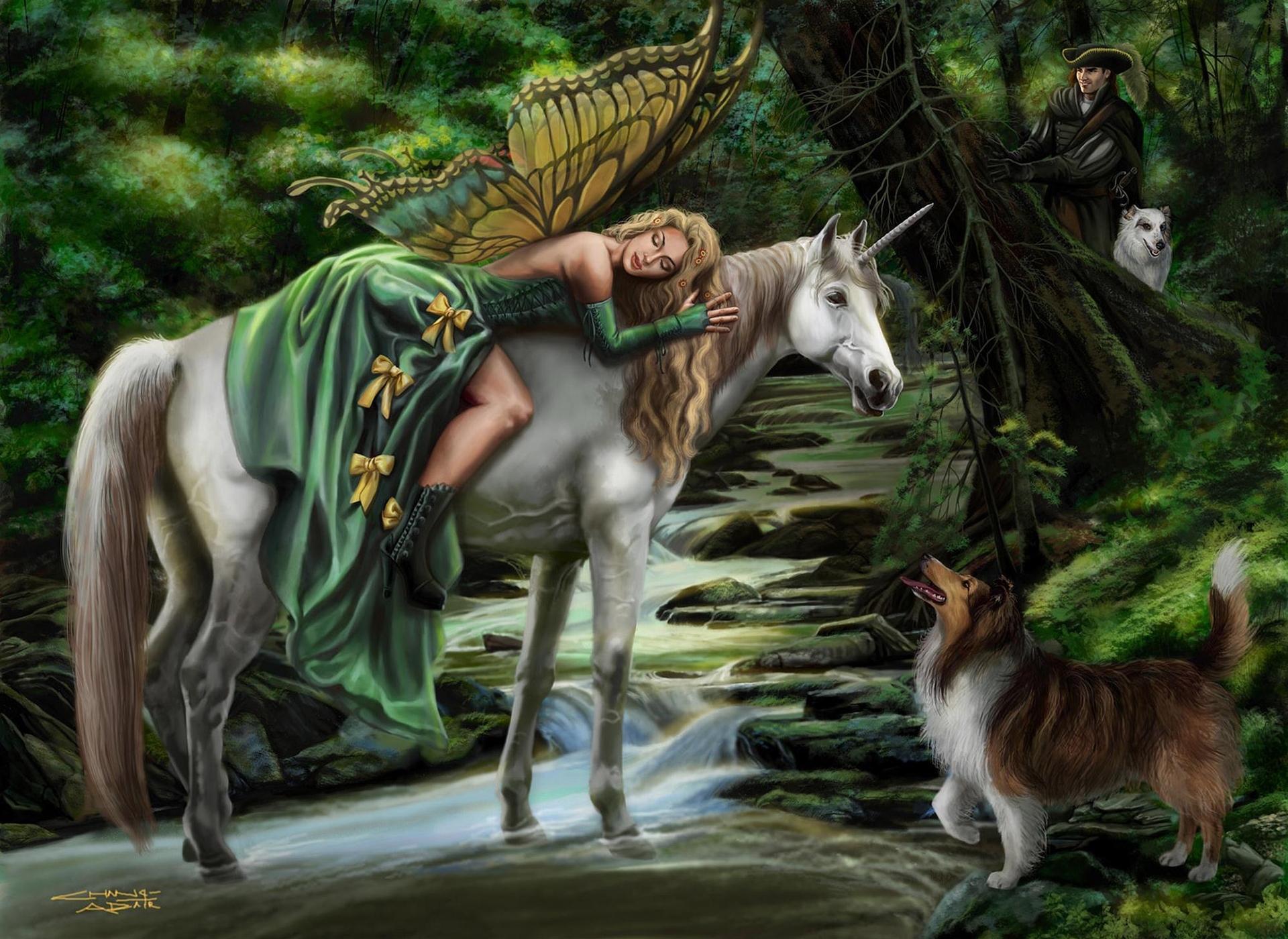 услуги картинки эльфы и животные втором