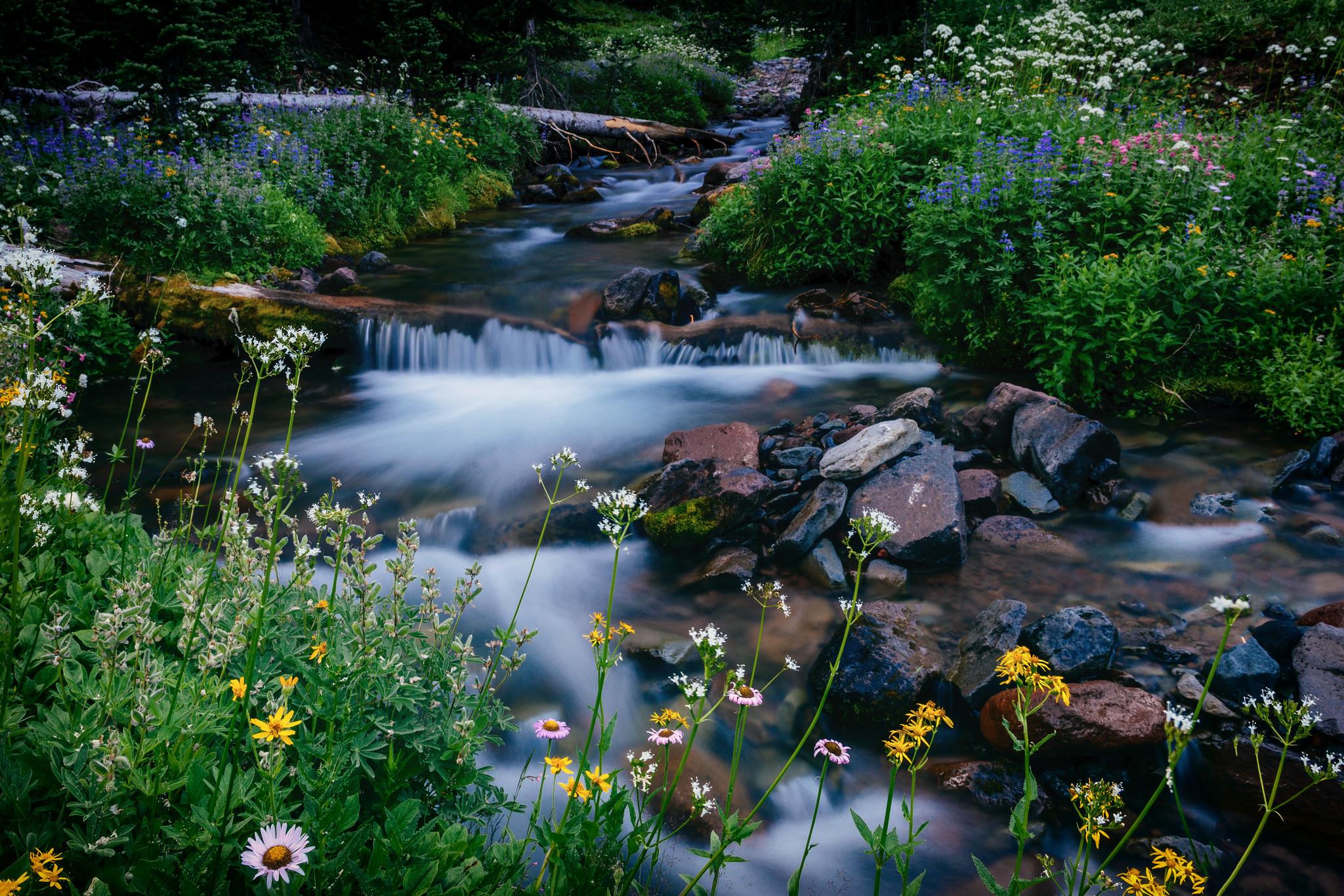 Ручей красивые картинки
