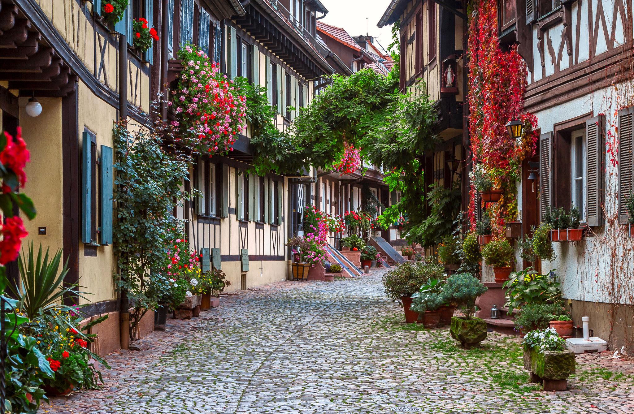 одним полезным красивые улицы картинки звязда штоле, что