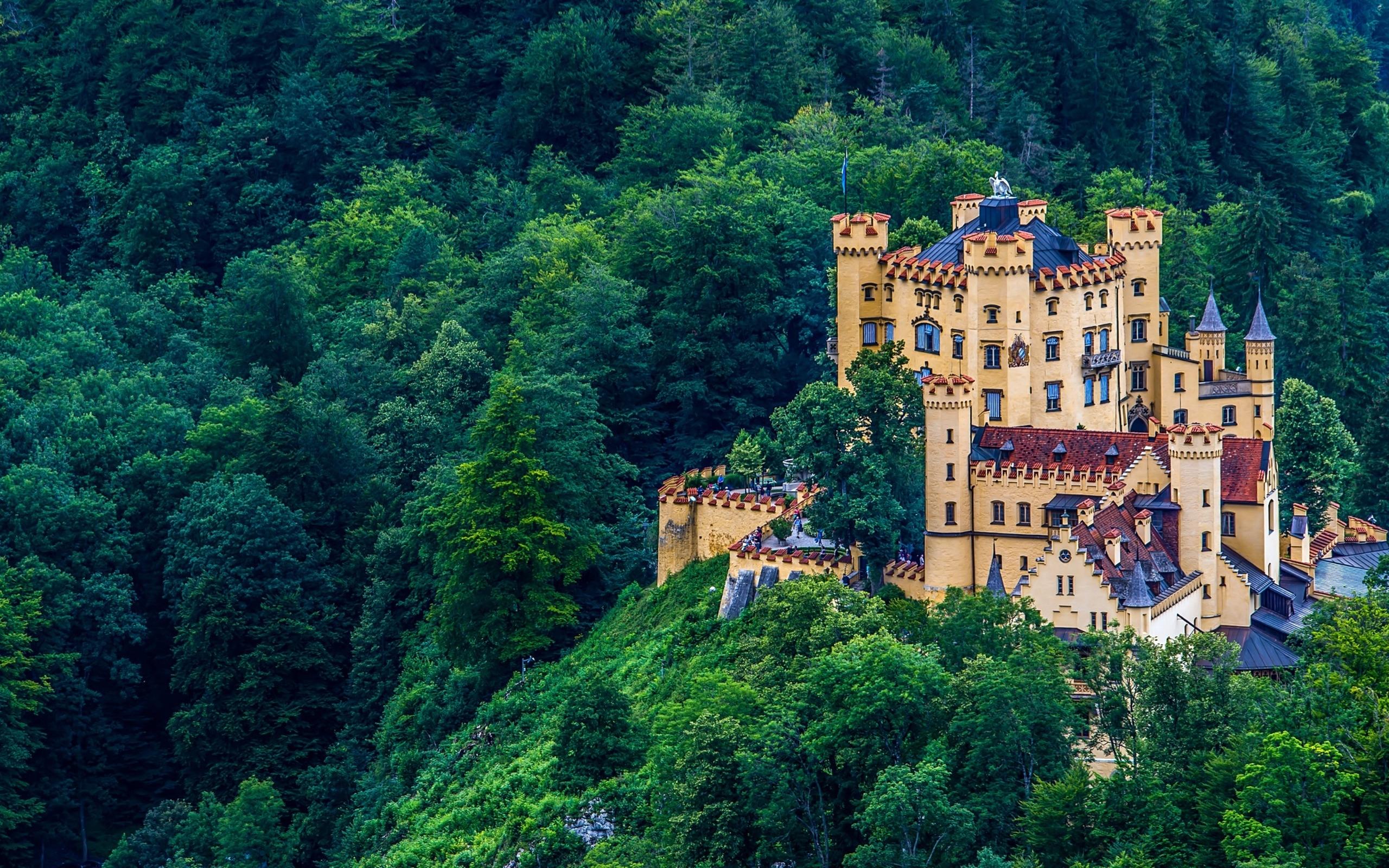 Картинки замок в лес