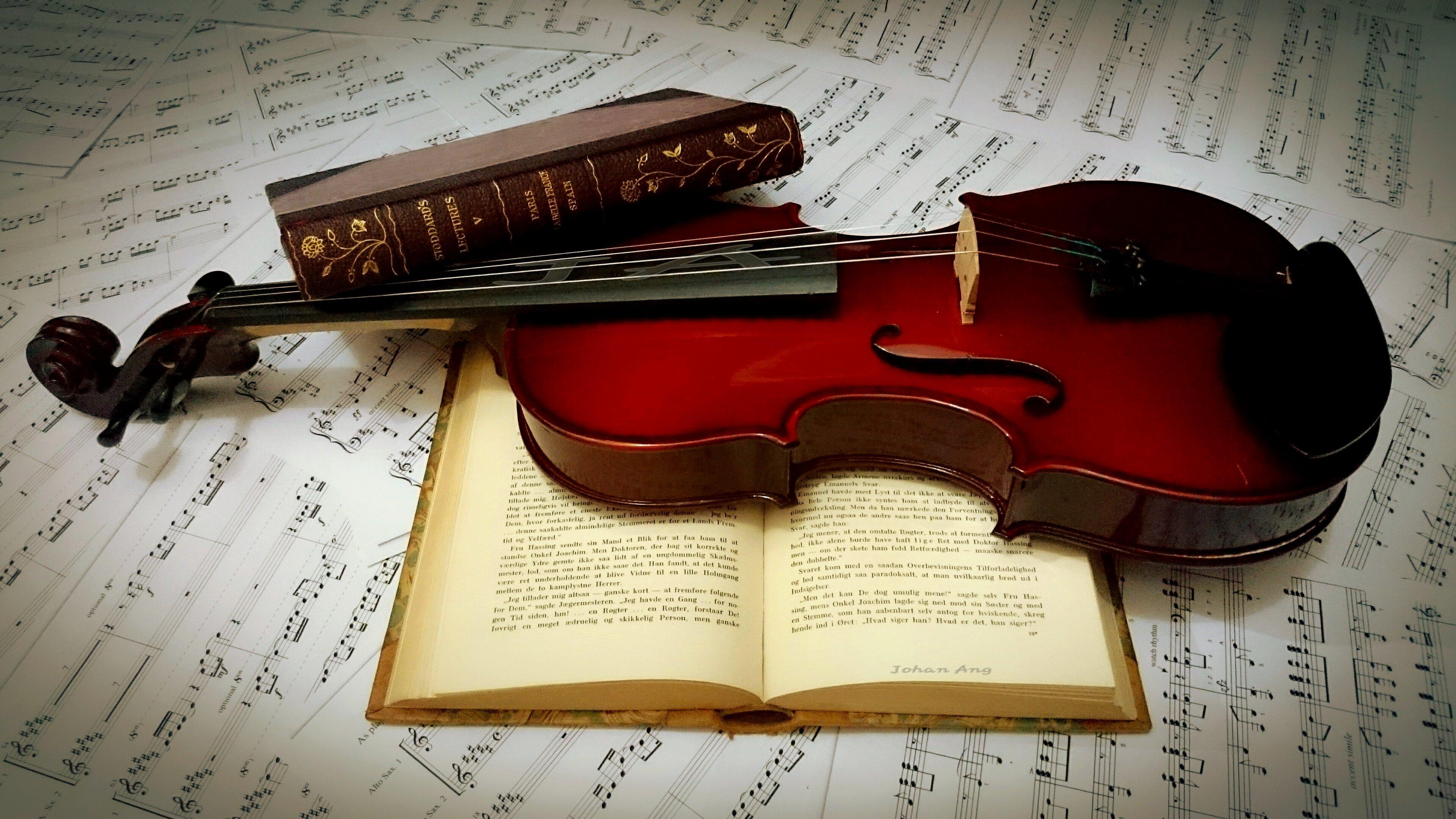 картинки скрипки на фоне нот