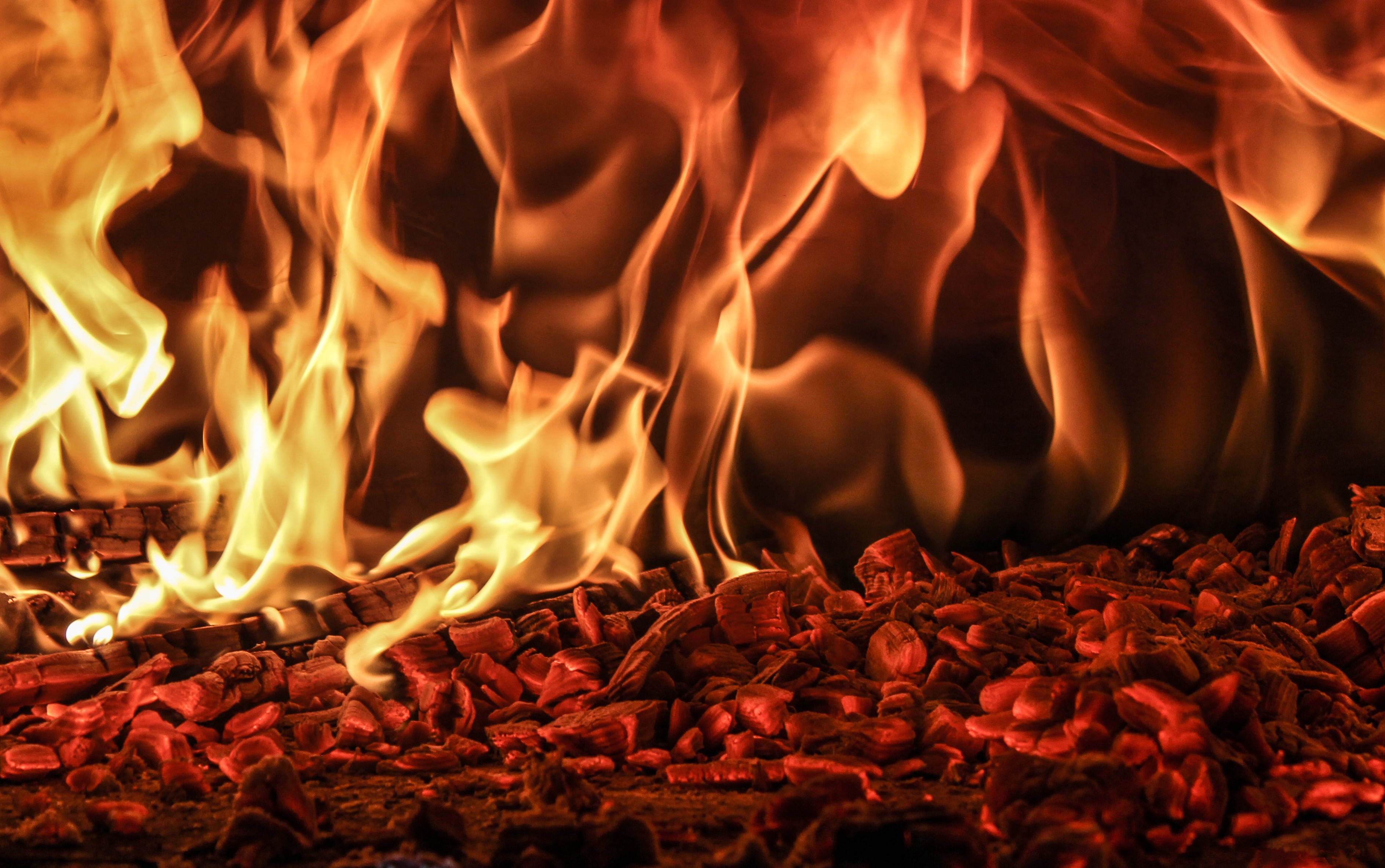 двух картинка огня в высоком качестве людей, выбравших своей