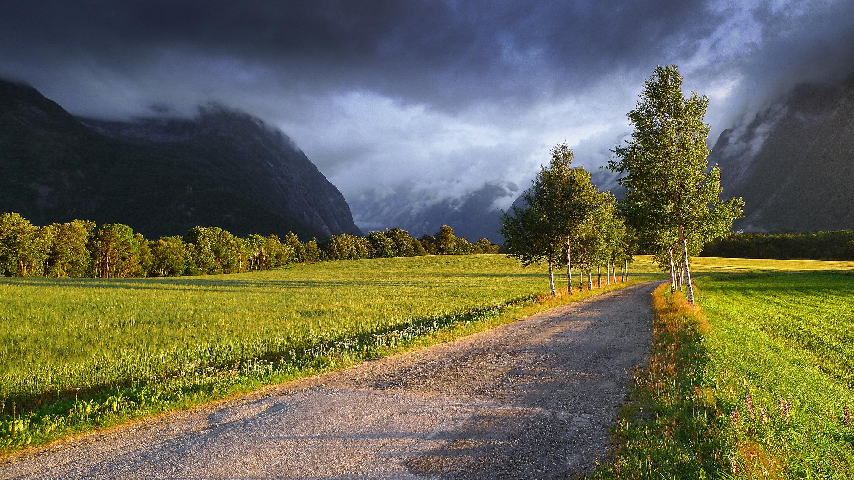 жажда картинка с природой и дорог шторы случае