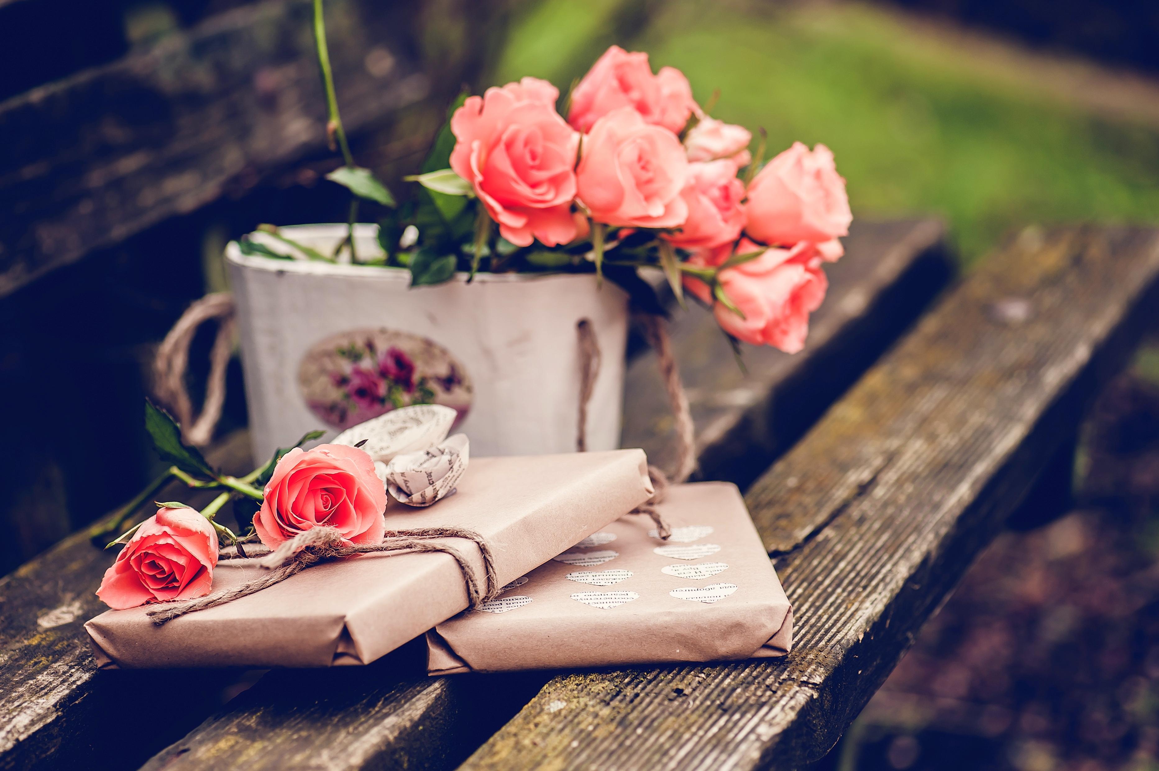 положением ванильные картинки с розами примером надежности продуманности