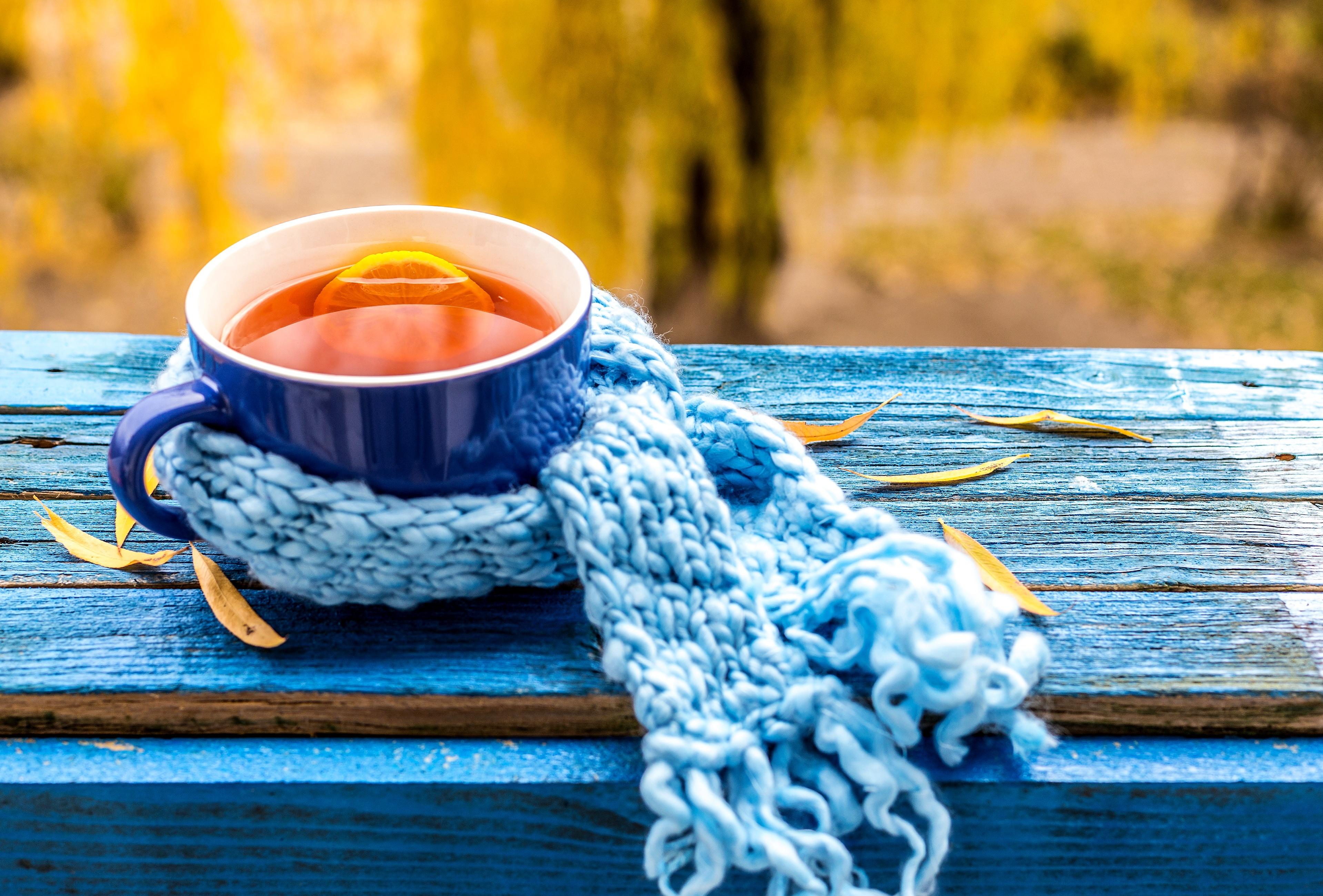 Обои осень, листья, лимон, осенние листья, чашка для ...