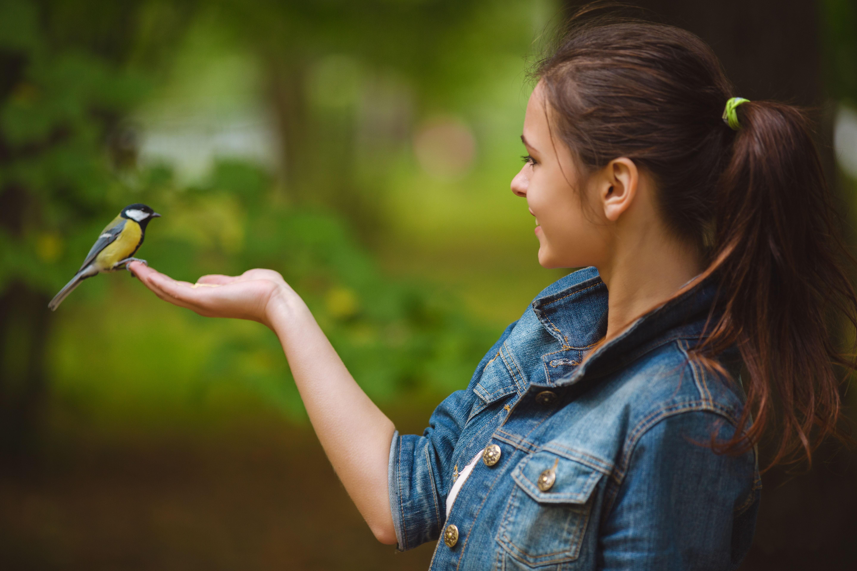 фото птицы и человек картинки день рождения