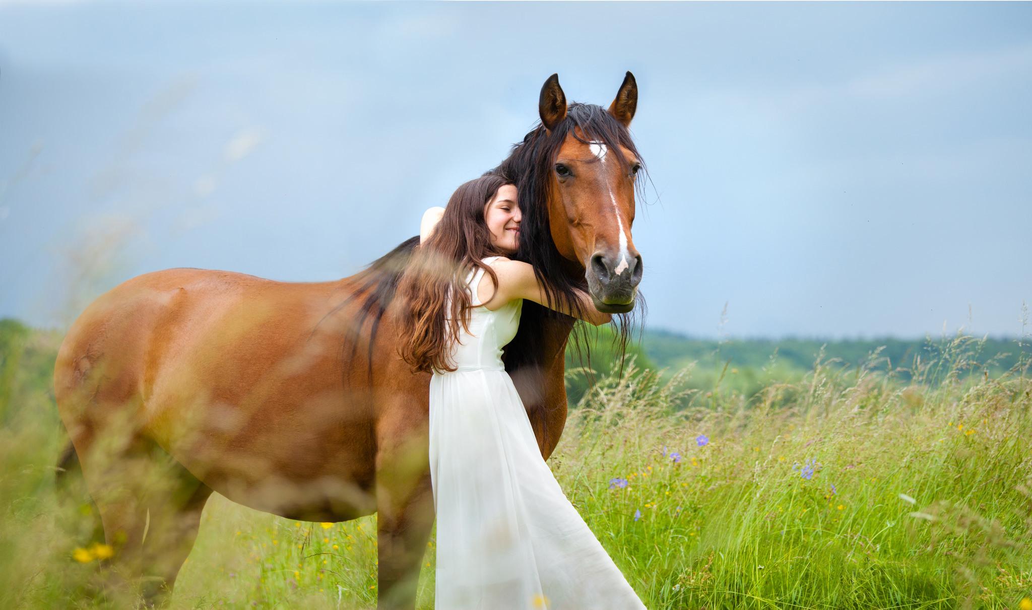Картинки человека и лошади
