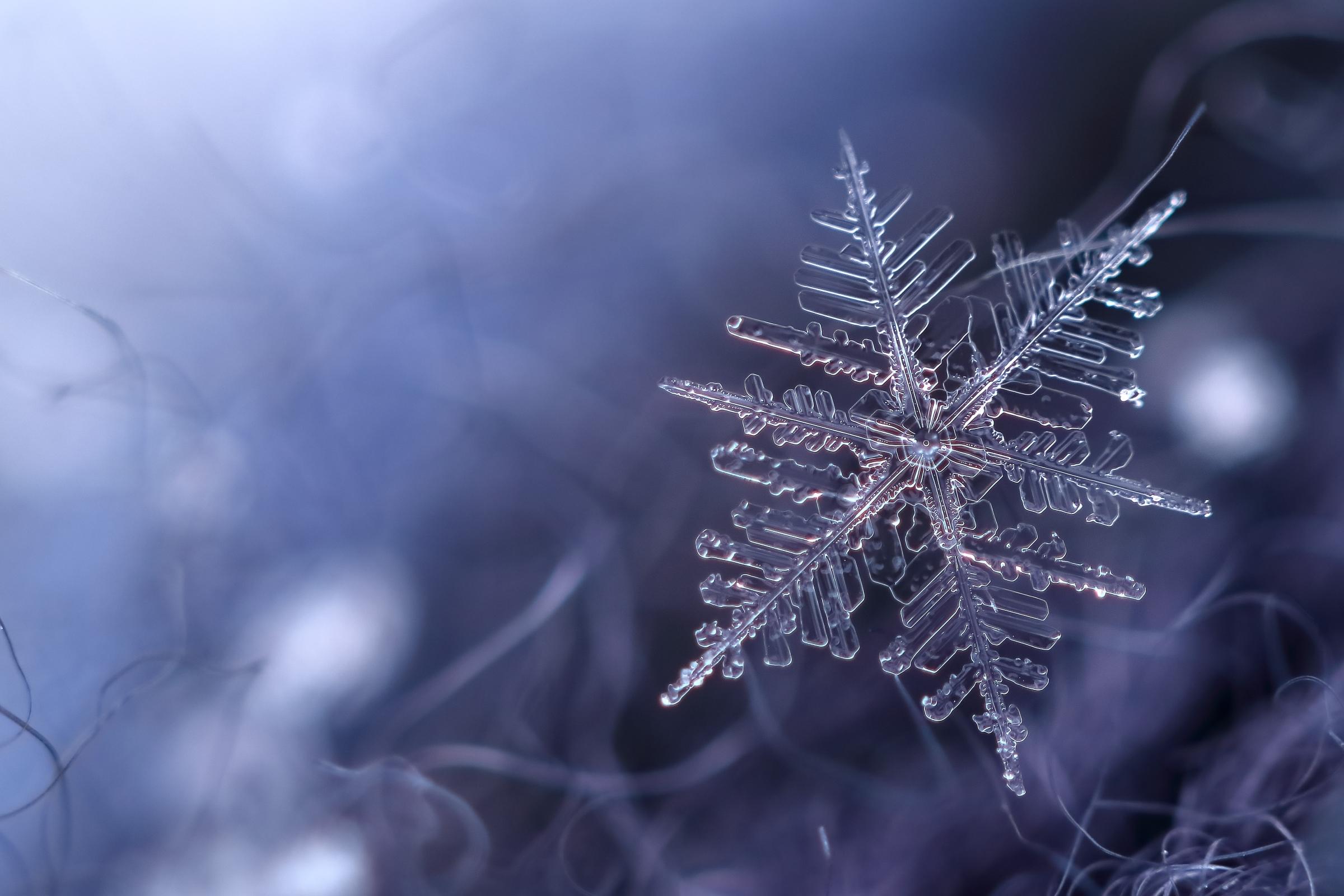 картинки на телефон снежинки в хорошем качестве