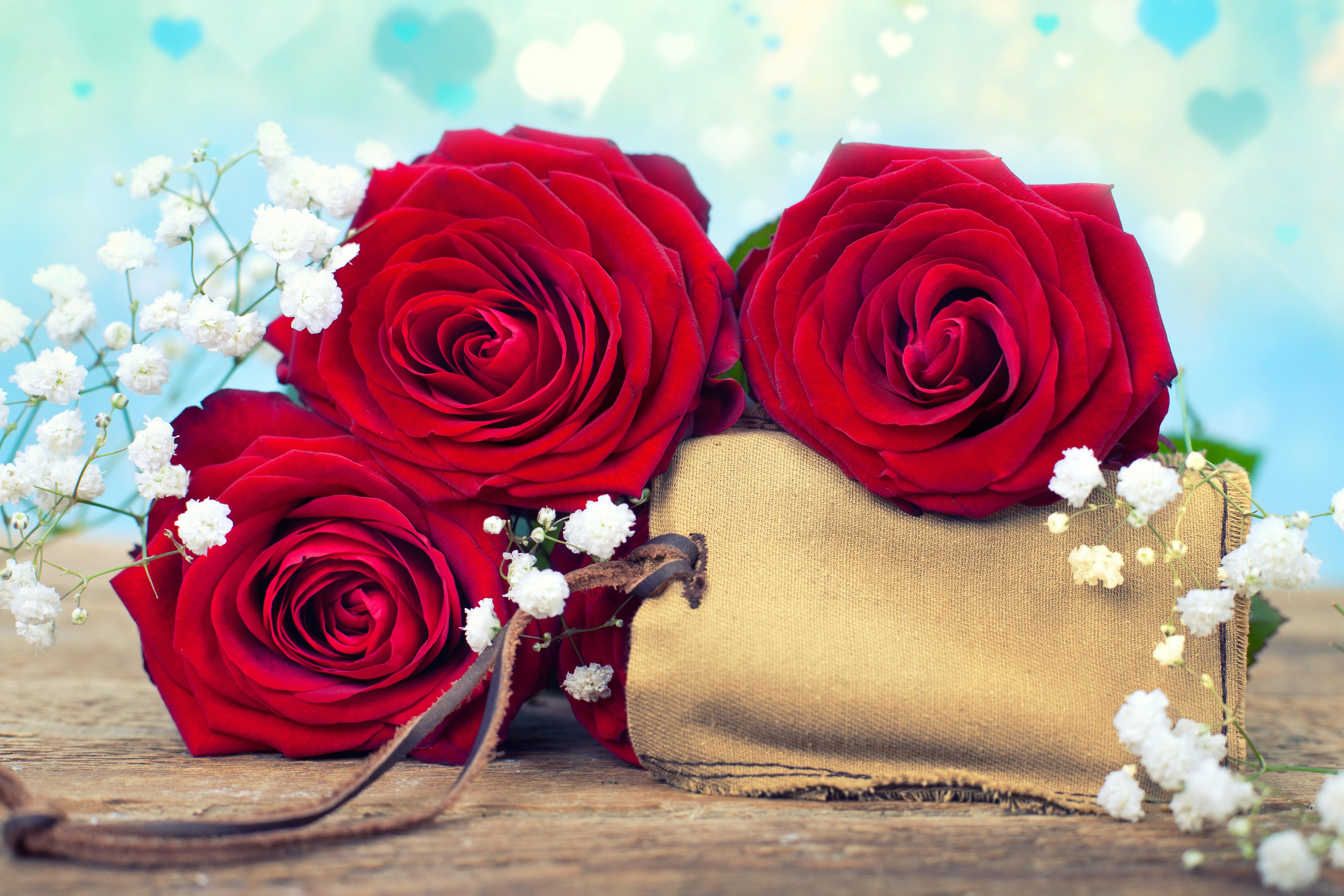 Розы в картинках или открытках красивые