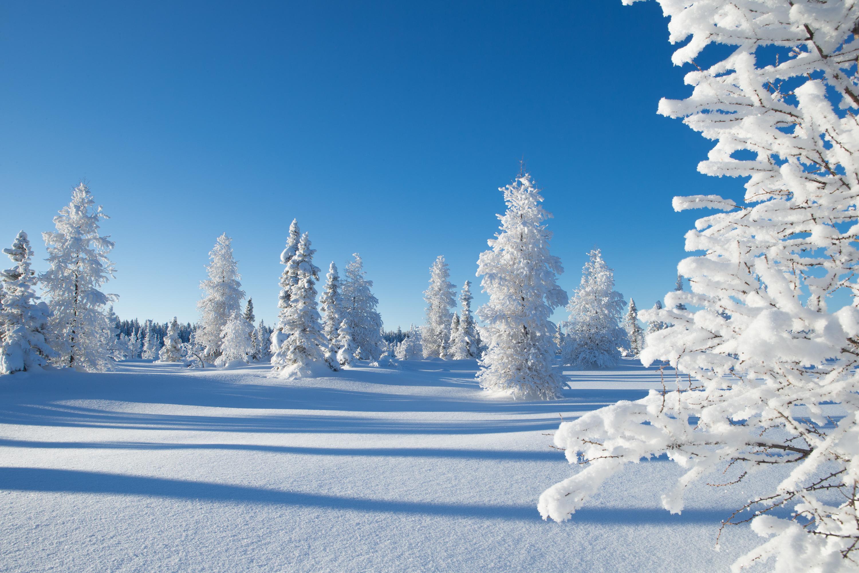 Картинки зима природа для компьютера