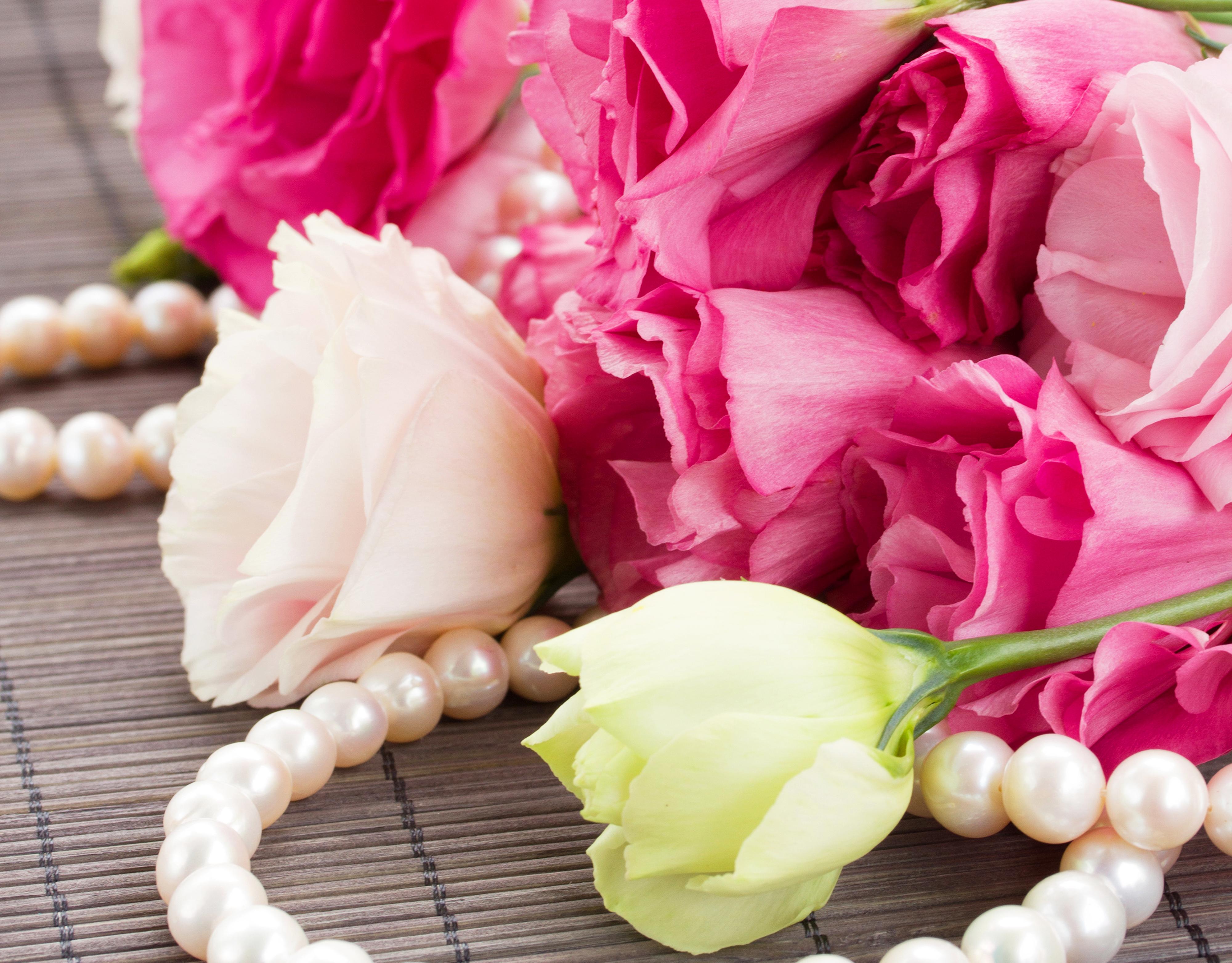 продаже картинки на телефон жемчуг и цветы все