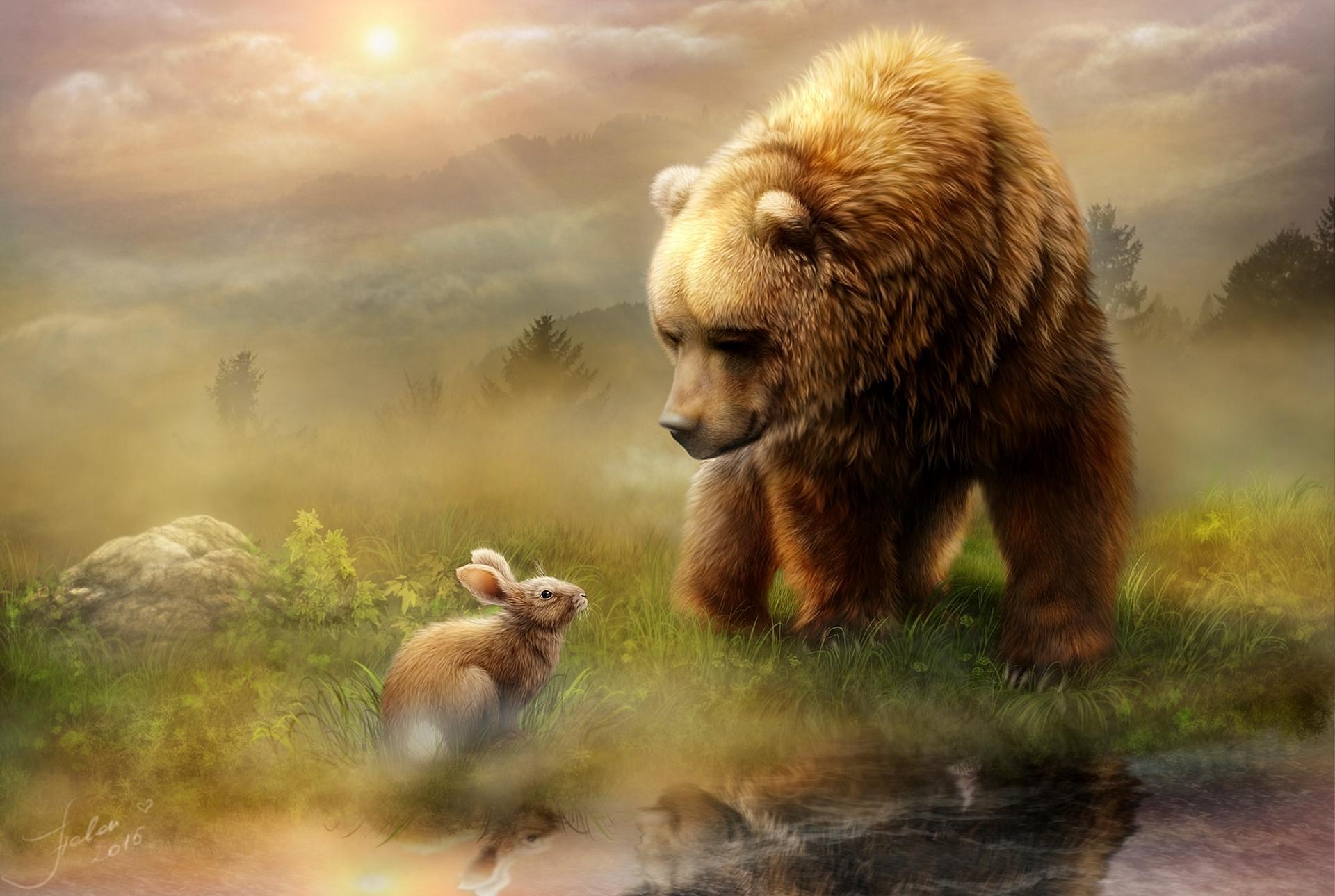 заняли красивые рисунки медведей представлены фото