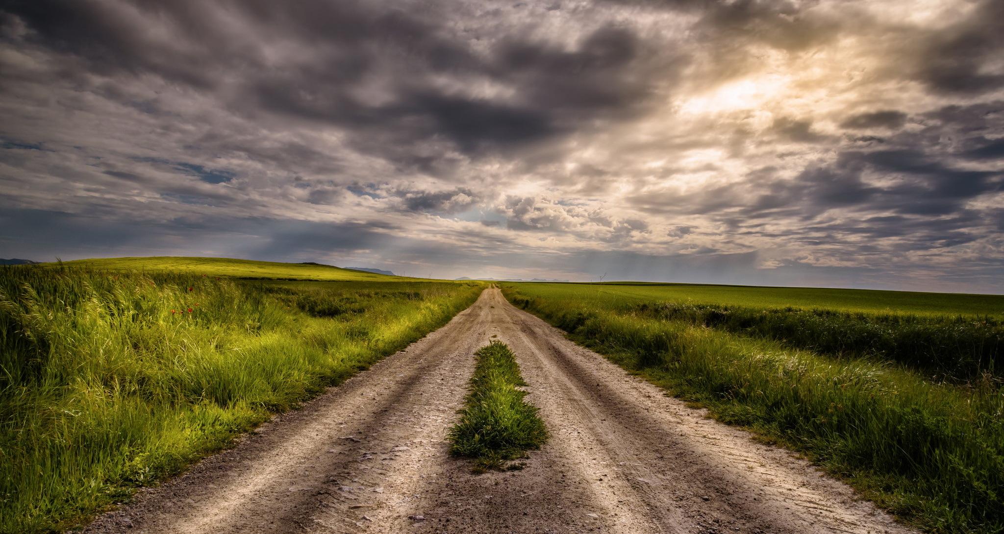 Дорога поле скачать