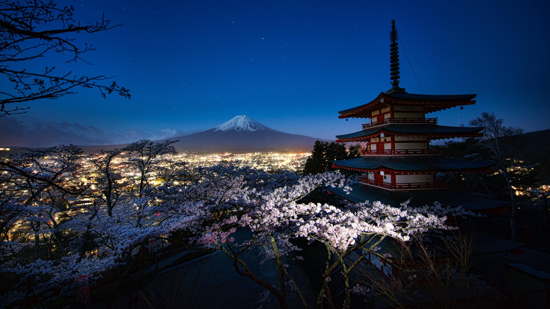 кошкин япония картинки фото высокого качества выбор