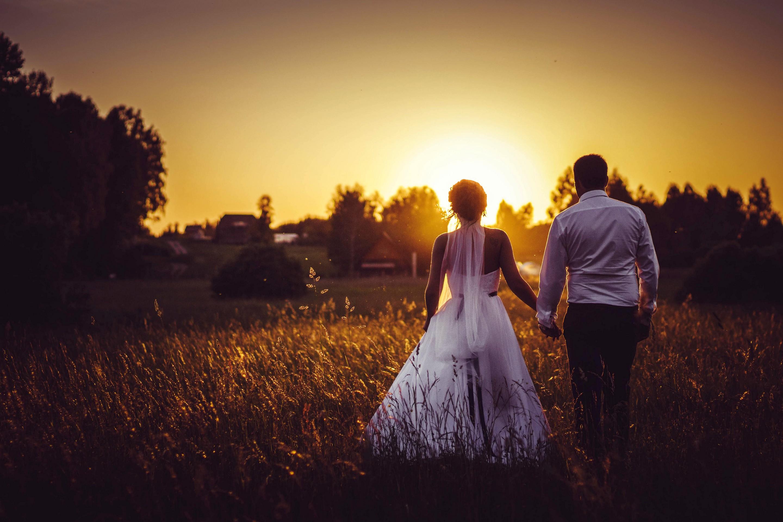 картинки со спины свадеб махровые цветы