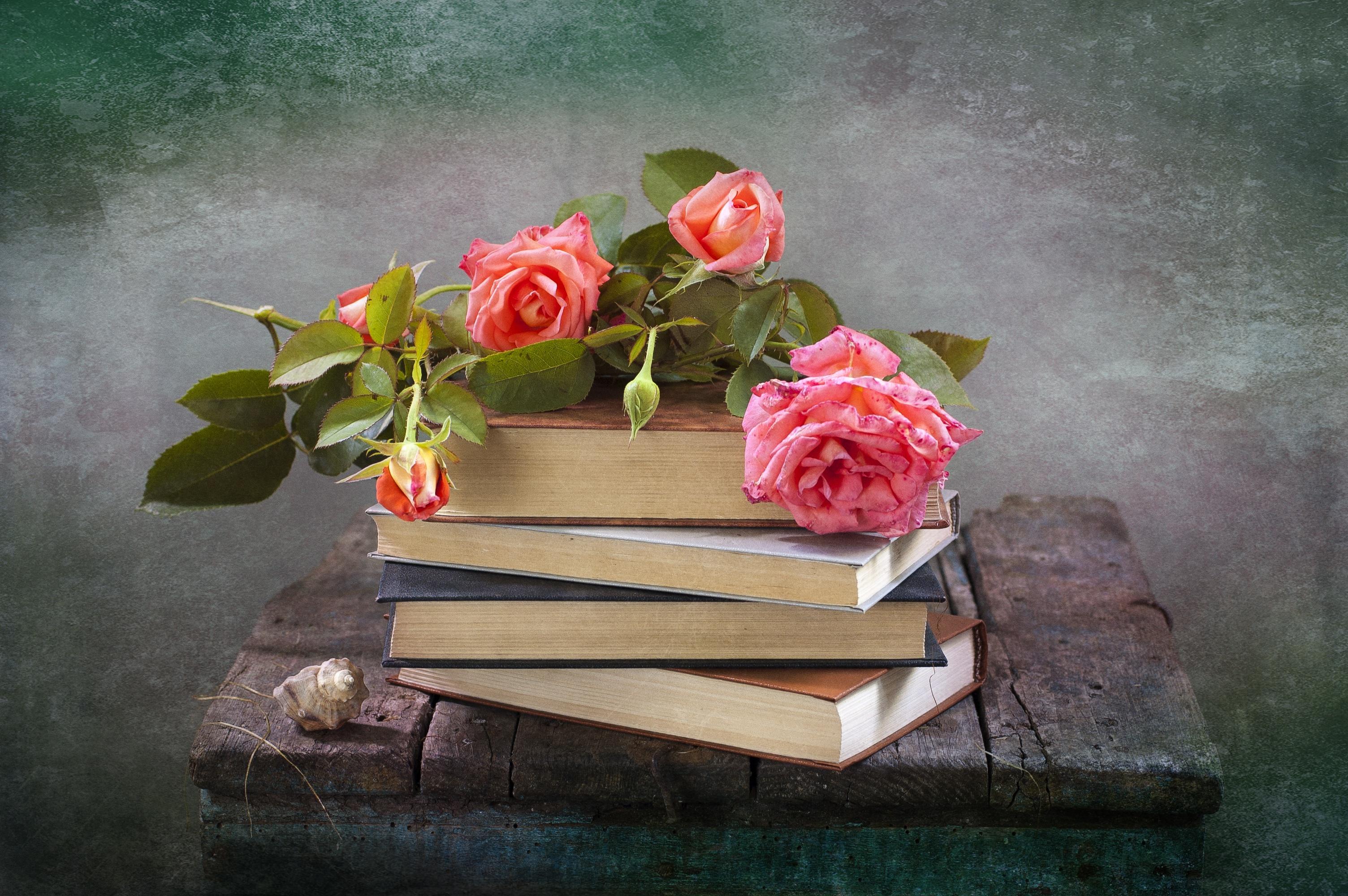 Обои книги, стиль, винтаж, цветы, кувшины. Разное foto 18