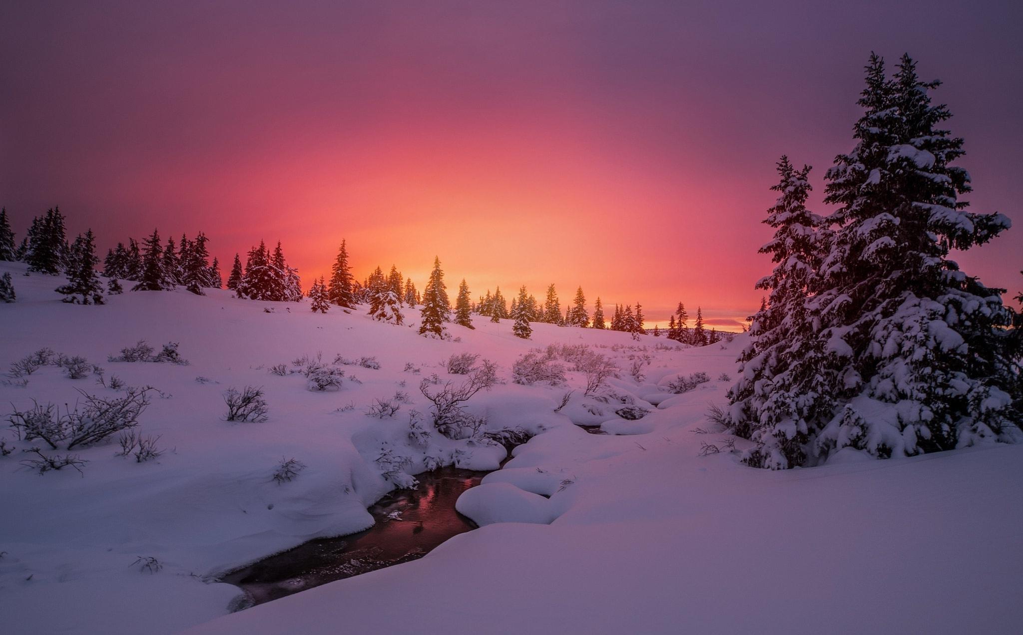 закат в снегах картинки каждый совершеннолетний